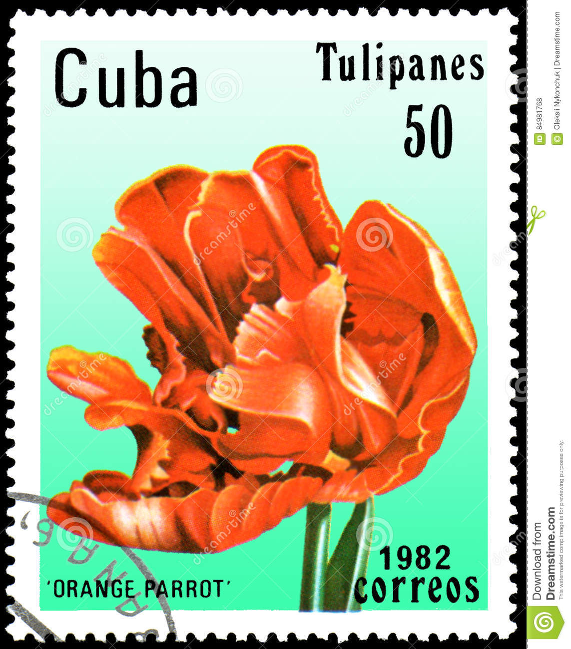 CUBA - CIRCA 1982: postage stamp printed in Cuba shows a tulip Orange Parrot
