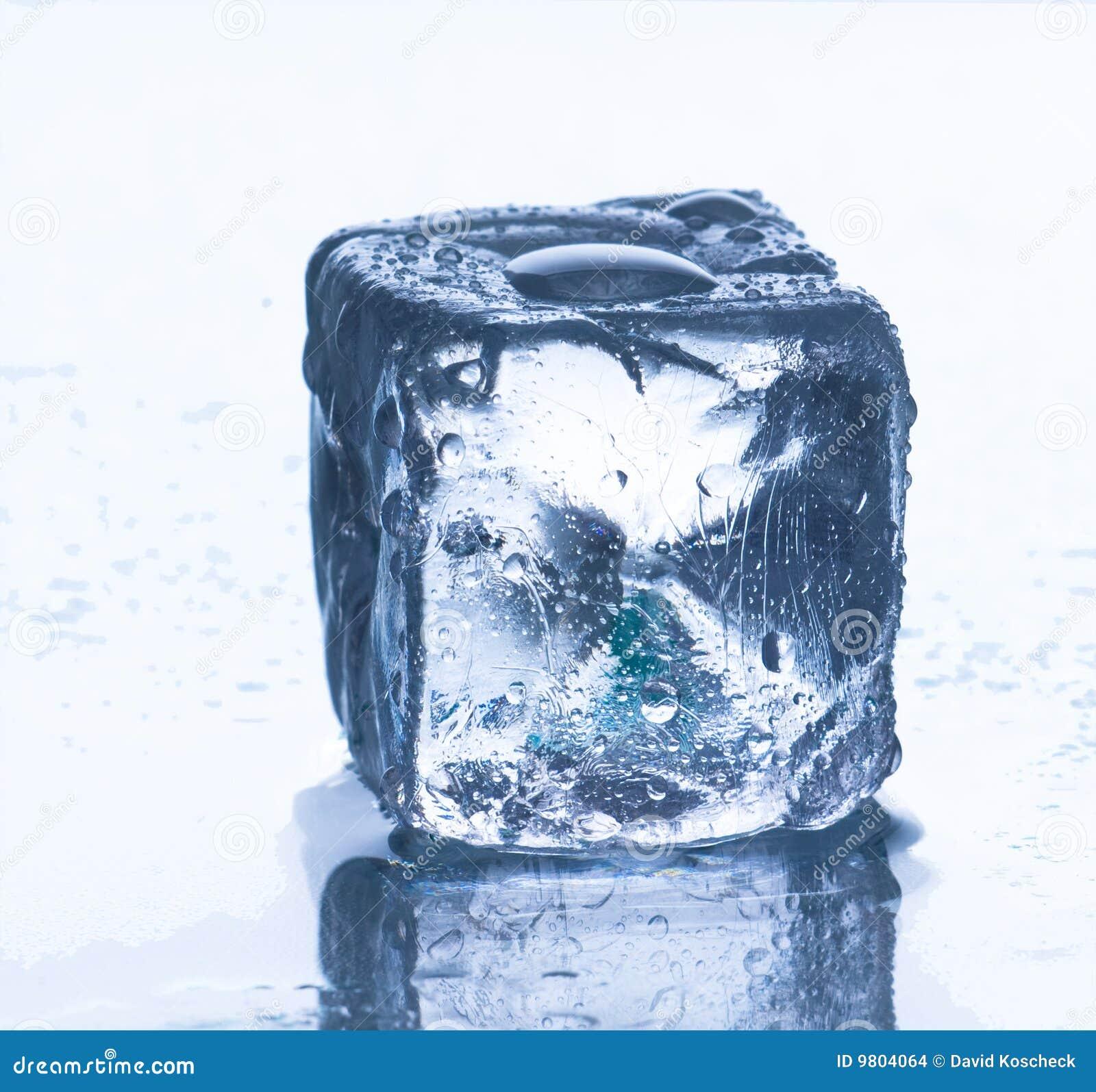 A la mierda tu cubo de hielo