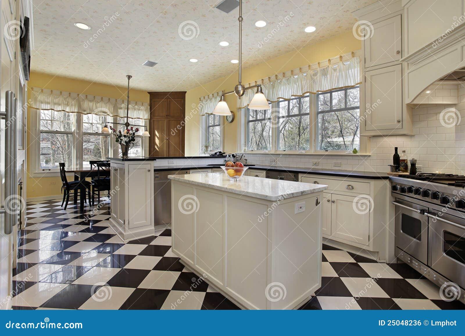 Cucina Con La Pavimentazione In Bianco E Nero Immagine ...