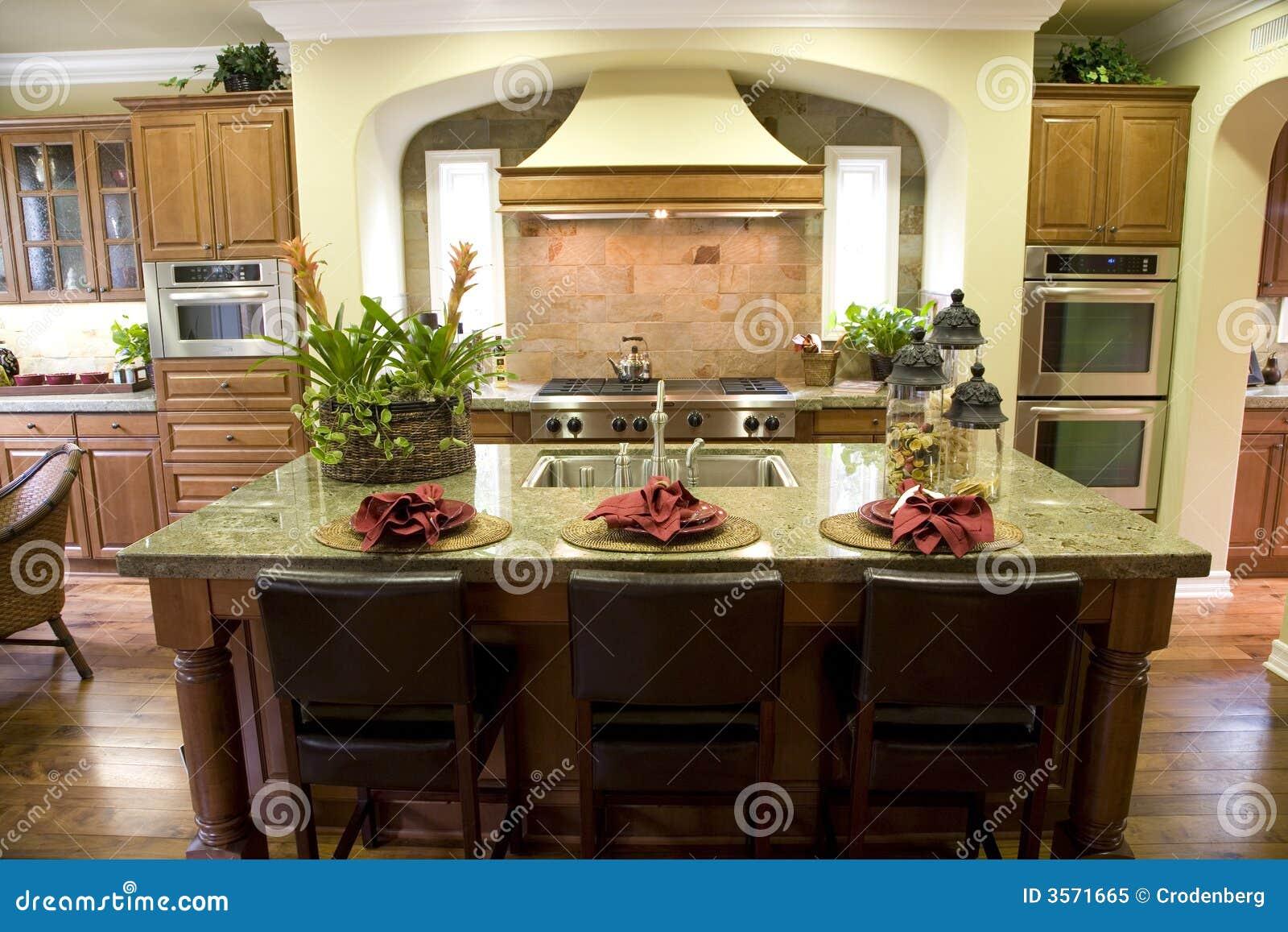 Cucina domestica di lusso
