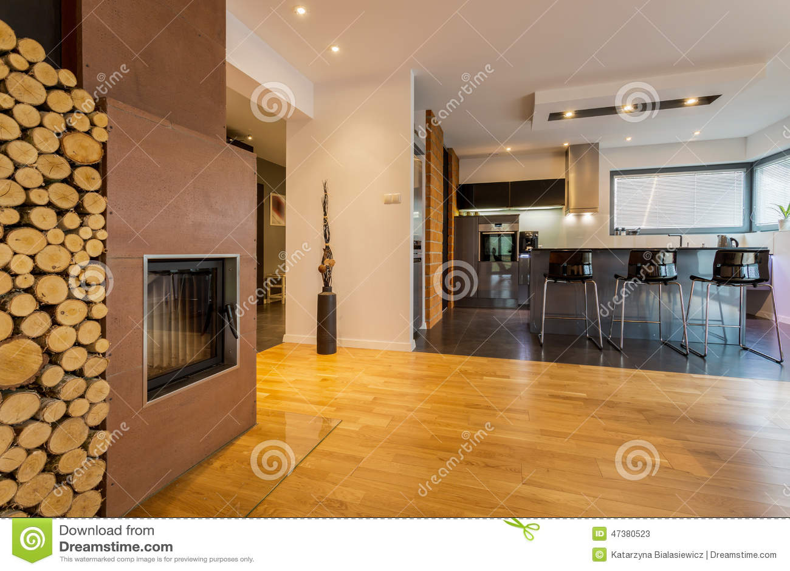 Cucina e salotto moderni fotografia stock immagine 47380523 - Cucina e salotto ...