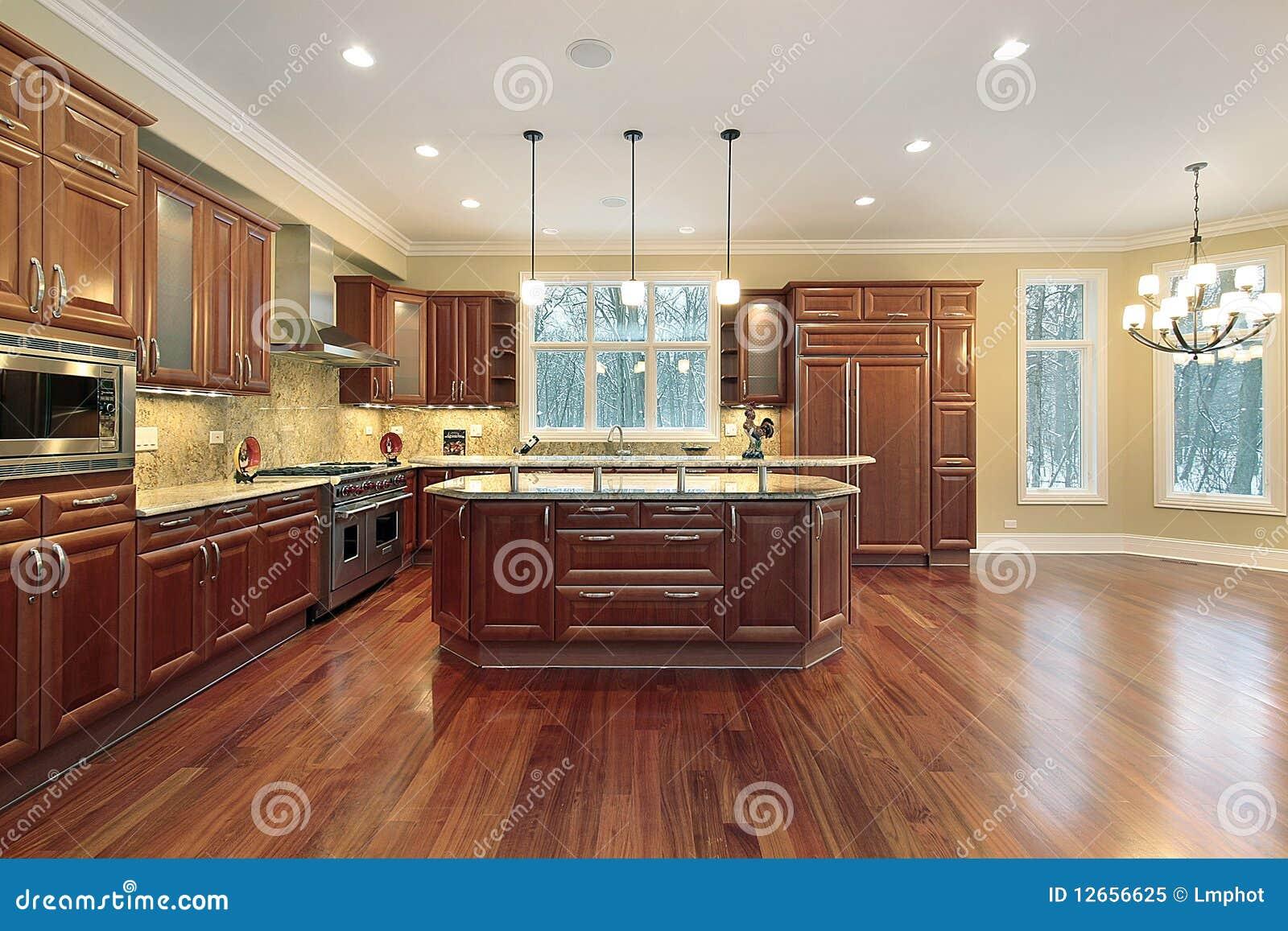 Cucina ed isola nella casa della nuova costruzione for Case di lusso di nuova costruzione