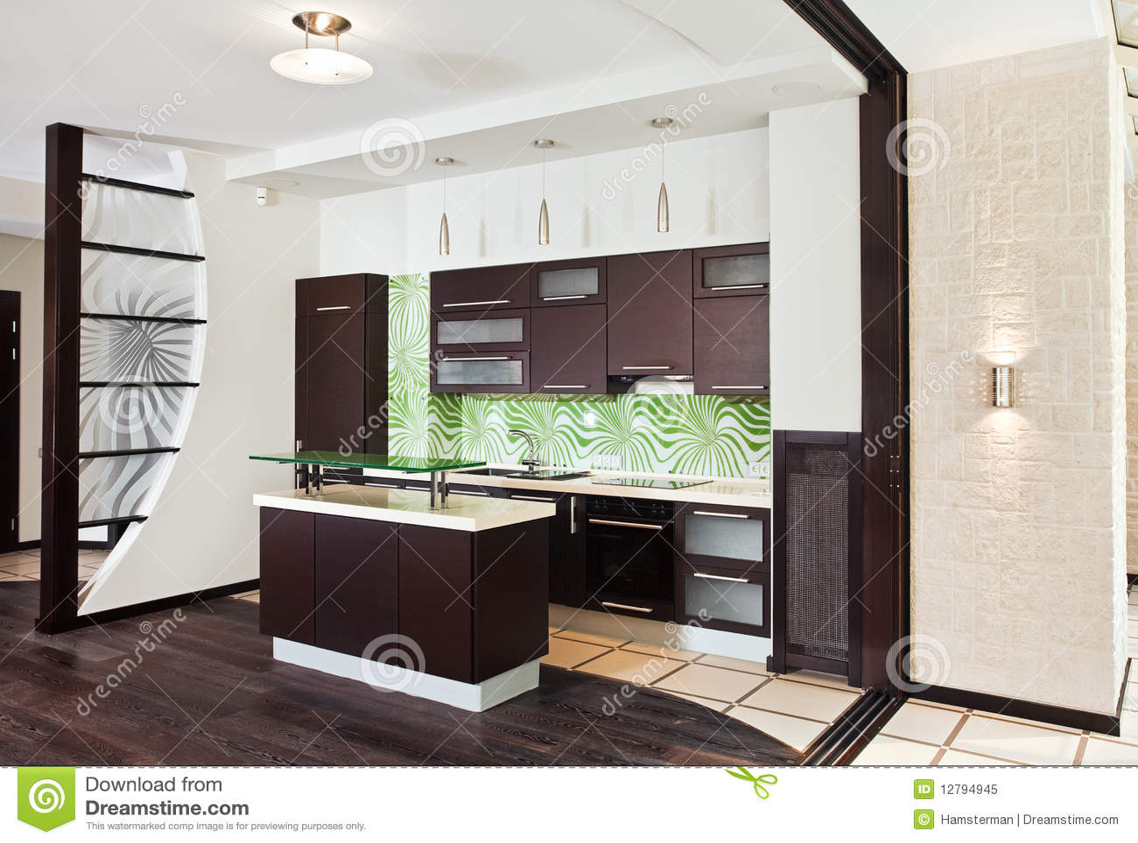 Eccezionale Cucina Moderna Con Il Pavimento Di Legno Scuro Immagine Stock  CG22