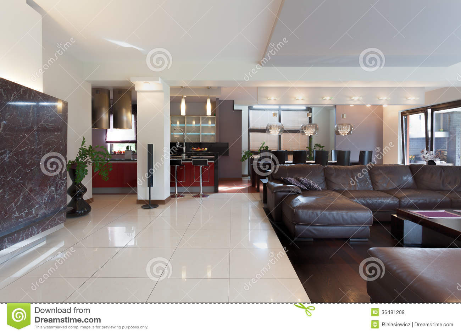 Cucina salone e sala da pranzo immagini stock libere da - Sala e cucina ...