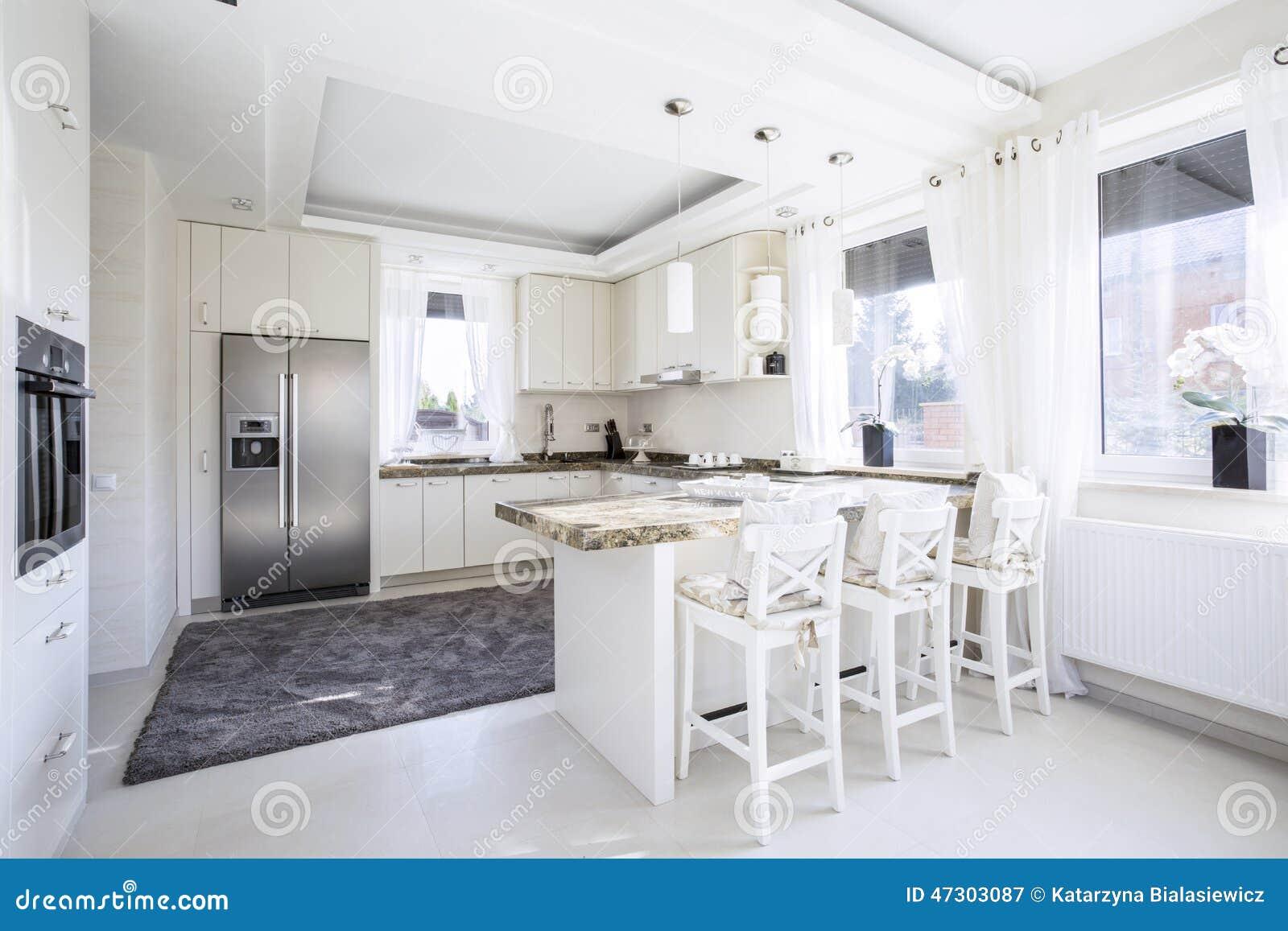 Cucina Spaziosa Con Il Controsoffitto Fotografia Stock ...