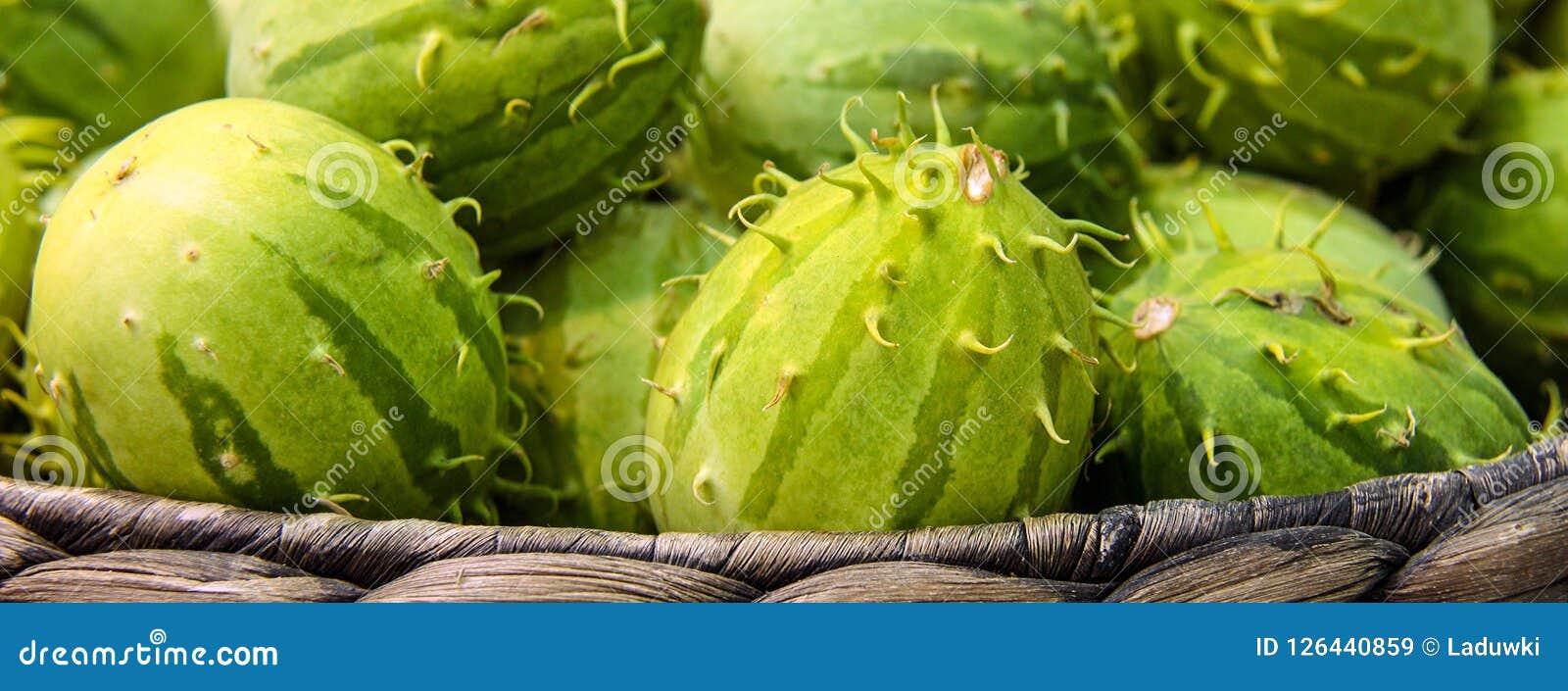Cucumisanguria, cackrey, kastanjebruine komkommer, het Westen Indische augurk en het Westen Indische pompoen Deco-fruit gele en g