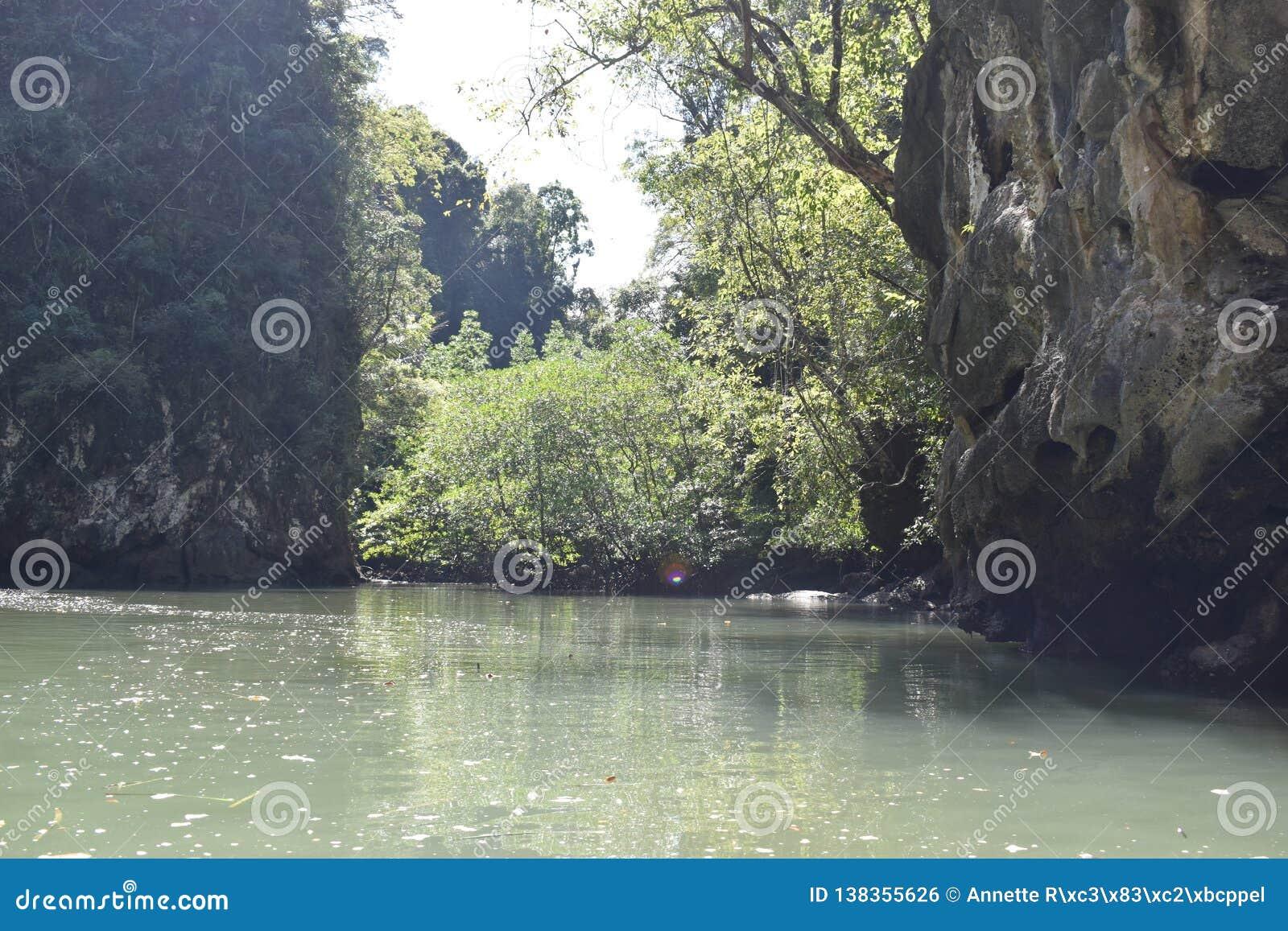 Cudowny górzysty krajobraz przy kajak wycieczką w namorzynowego las w Ao Thalaine w Krabi w Tajlandia, Azja