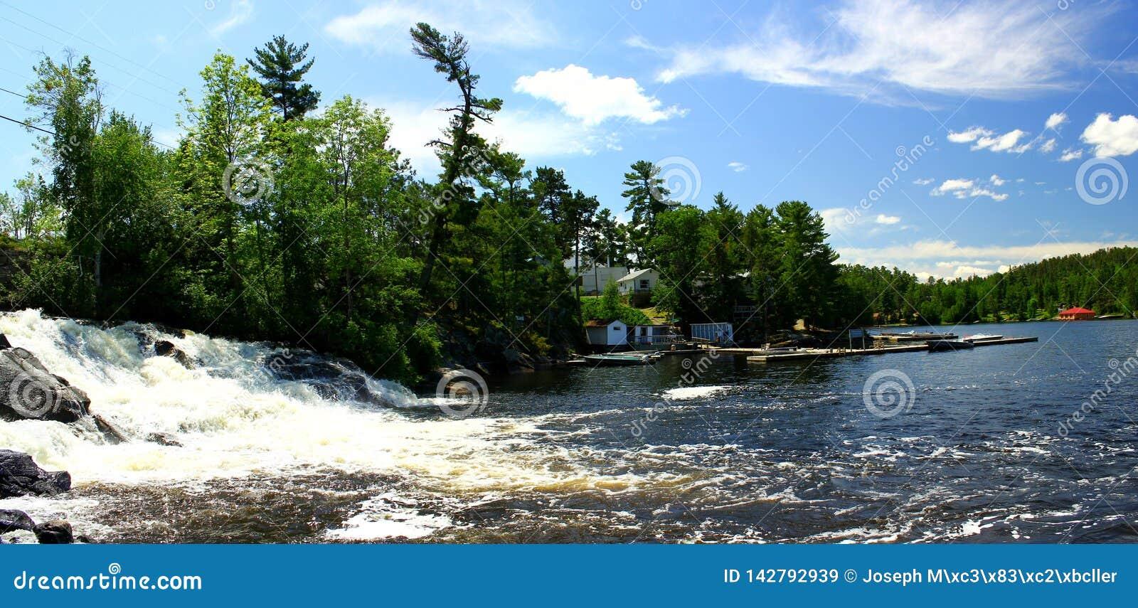 Cudowny letni dzień: Piękny jezioro w kanadyjskim lesie