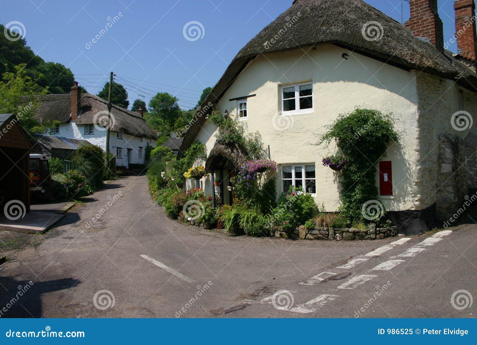 Cudowny powlekania domy strzechą