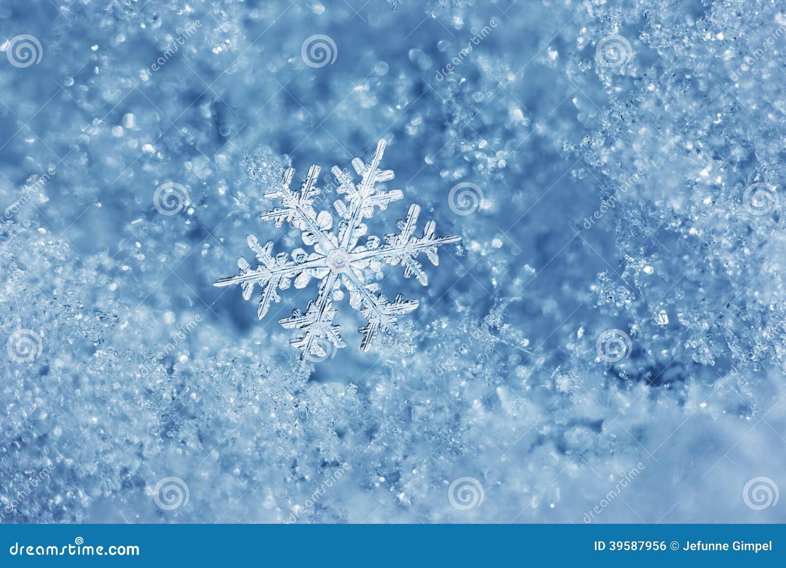 Cuento de hadas del copo de nieve