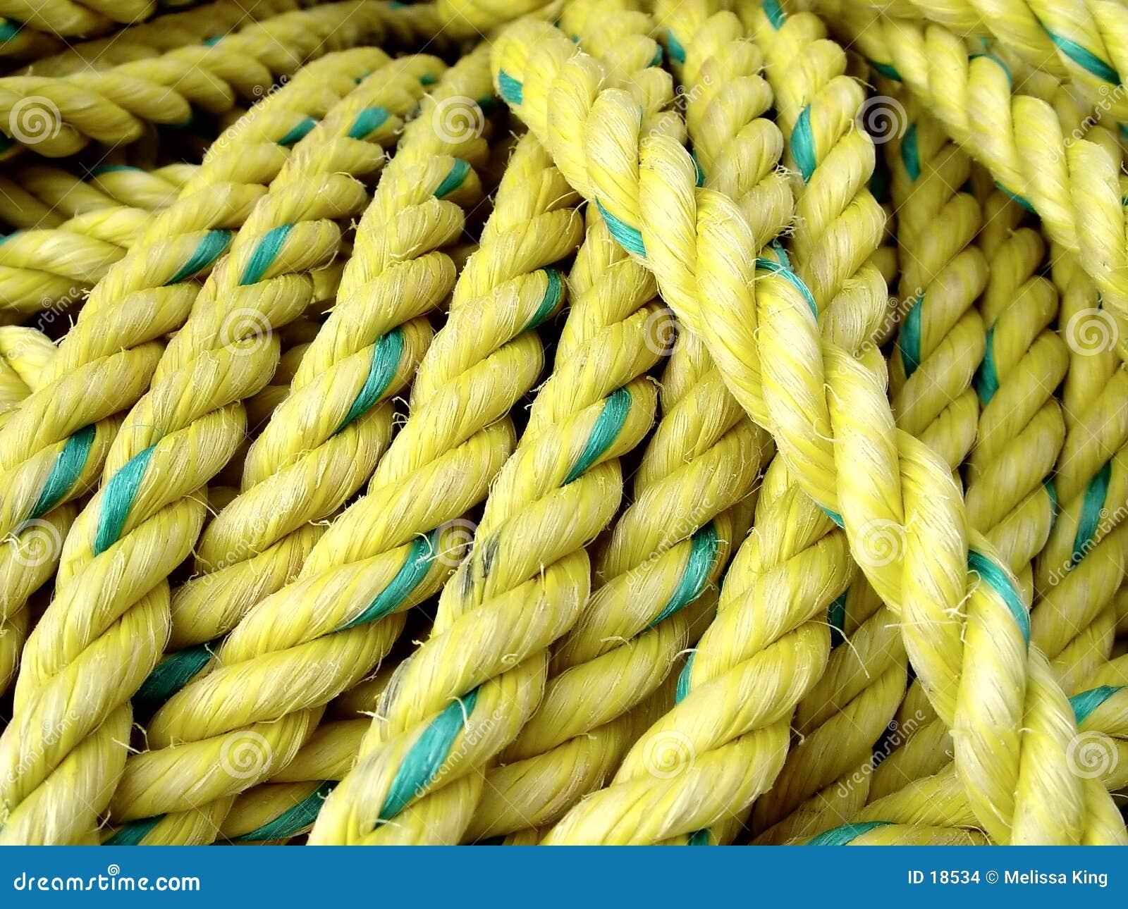Cuerda amarilla de la pesca