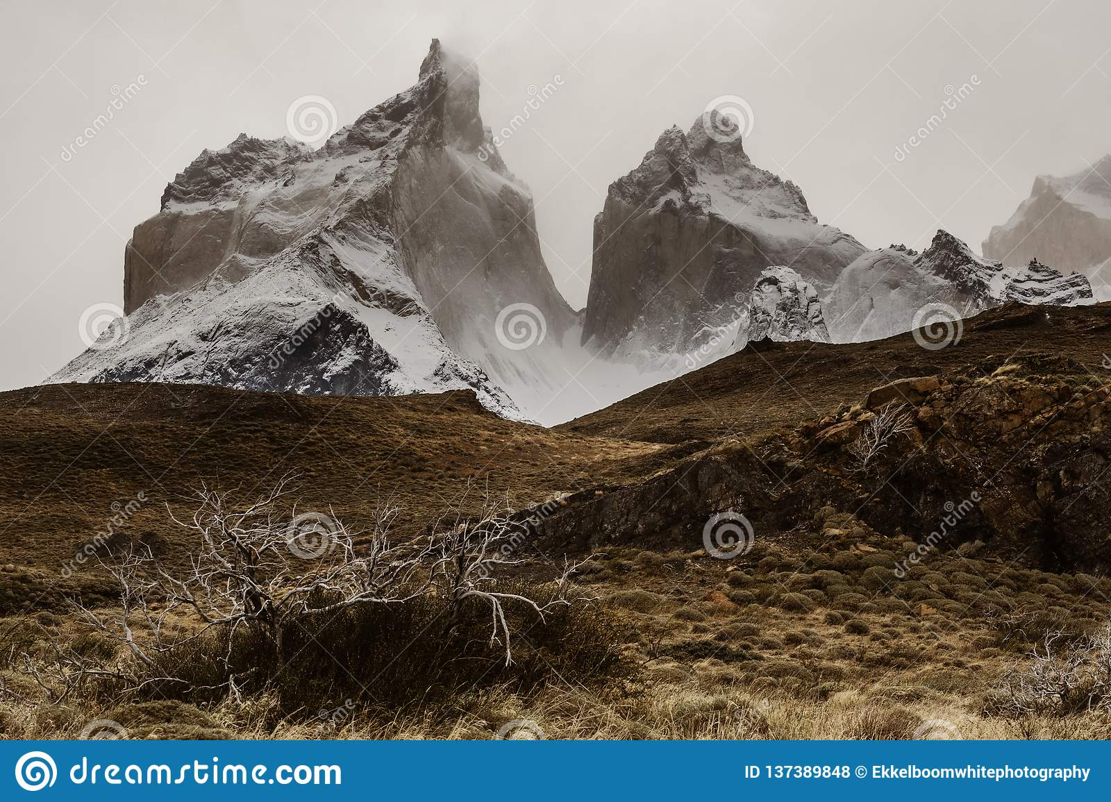 The Cuernos moutains in Torres Del Paine in Patagonia