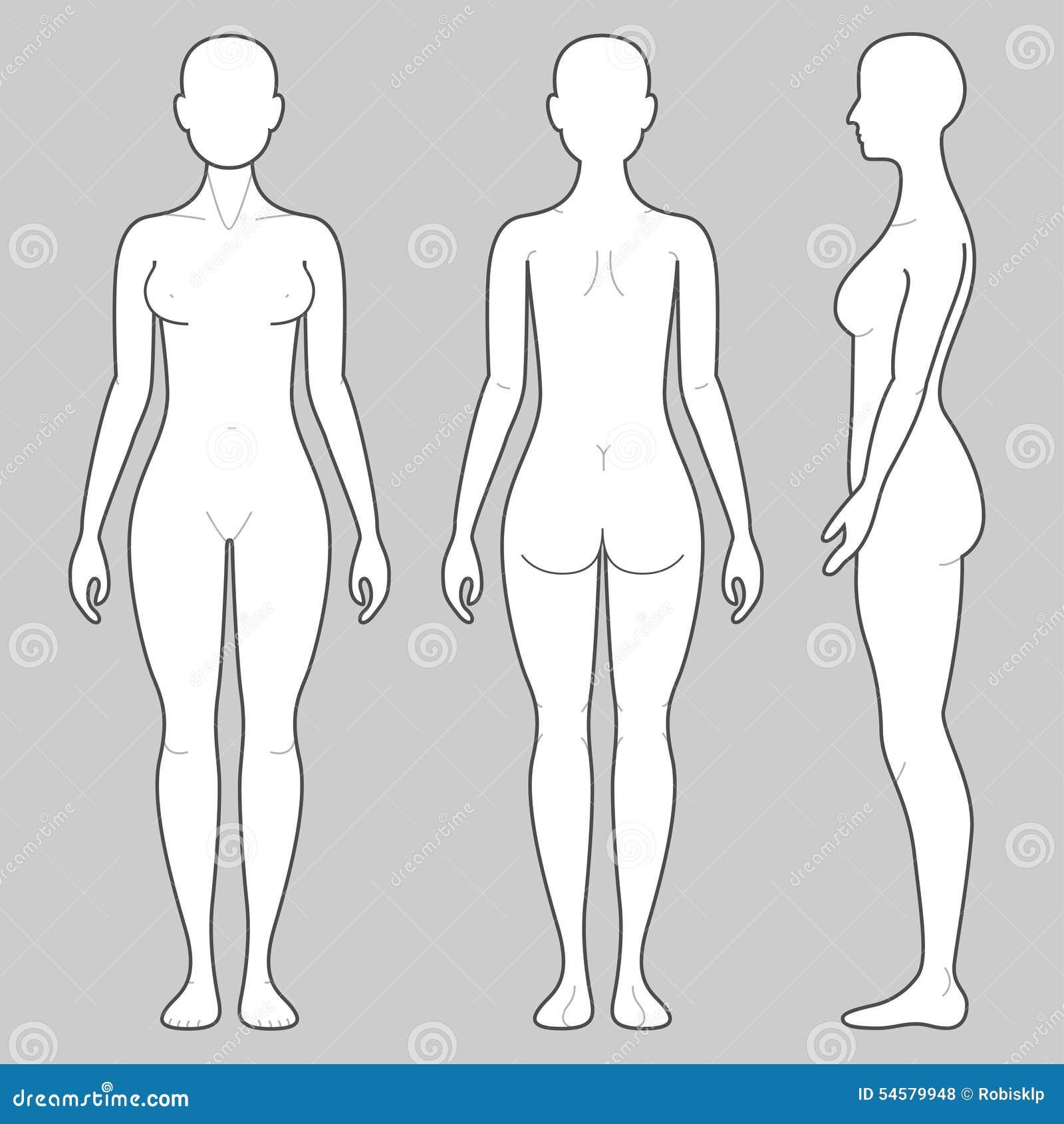 Cuerpo femenino ilustración del vector. Ilustración de bosquejo ...
