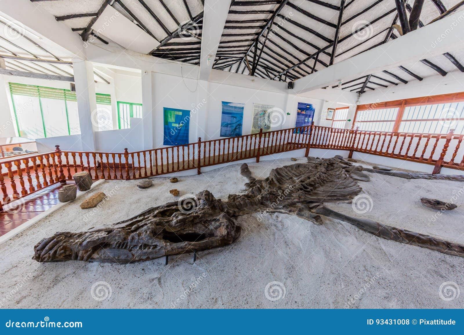 Cuesta De Museum Villa De Leyva Boyaca Del Fosil De Dinosaurio De Museo Del Fosil Foto De Archivo Editorial Imagen De Fosil Boyaca 93431008 תמונות מmuseo paleontologico de villa de leyva. dreamstime
