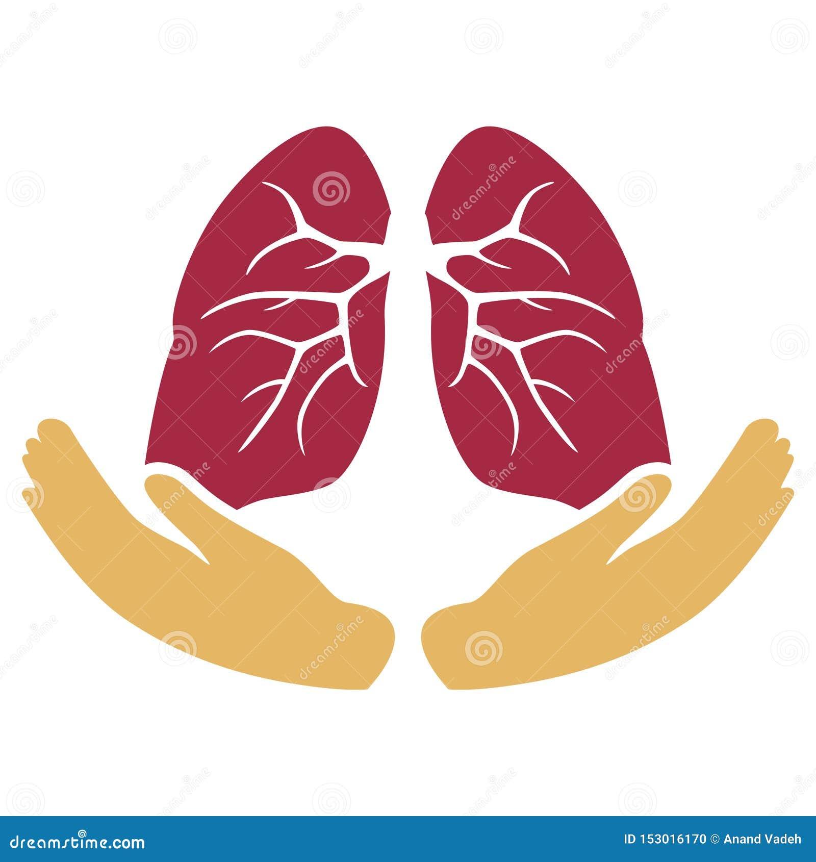Cuidado del corazón con símbolo de las manos