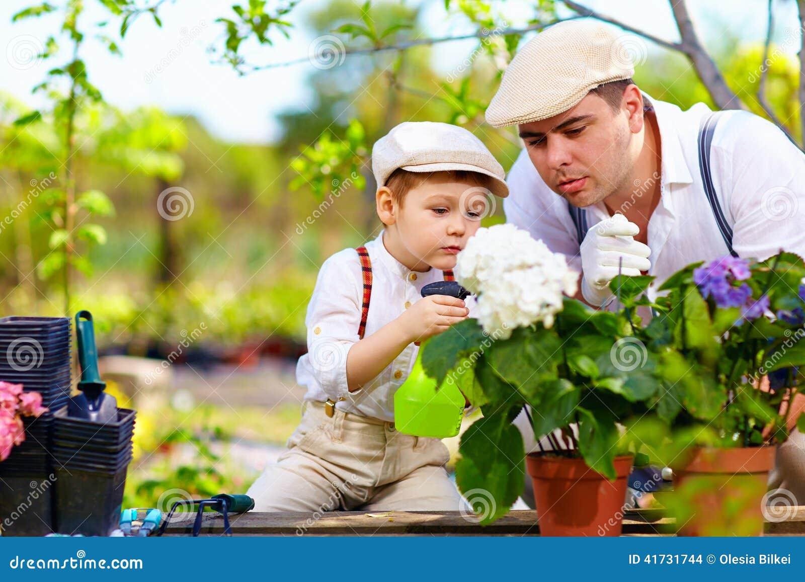 Cuidados de la familia para las plantas en jard n de la for Jardines en primavera fotos