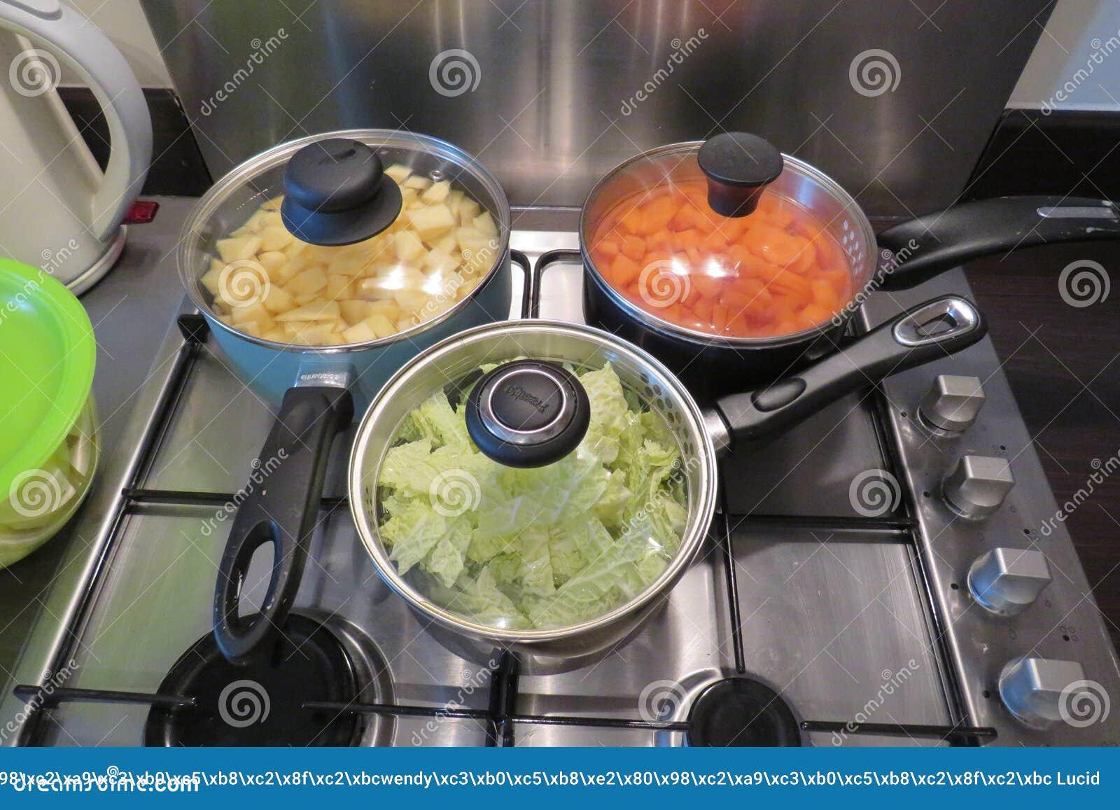 Cuisine familiale sur un aliment d ?bullition de fraise-m?re de gaz dans la grande casserole