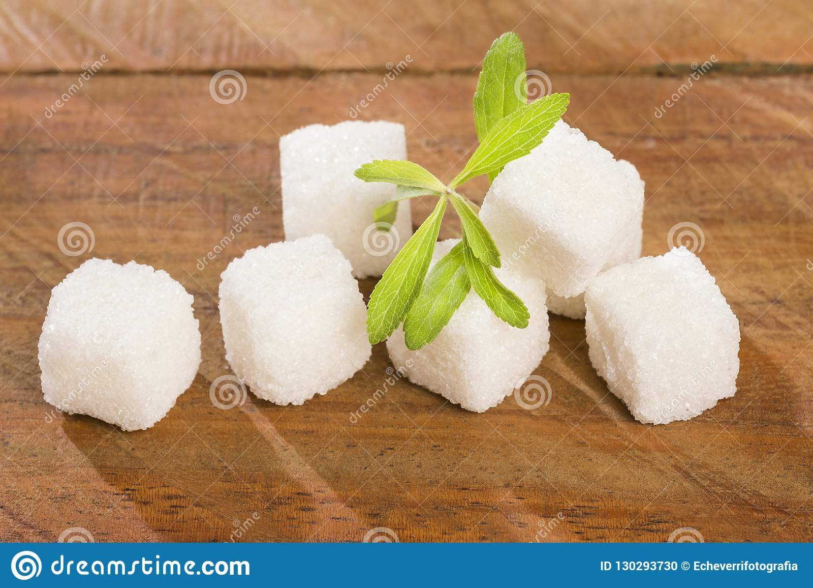 Cukrowi sześciany i liście stevia roślina - Stevia rebaudiana słodzik