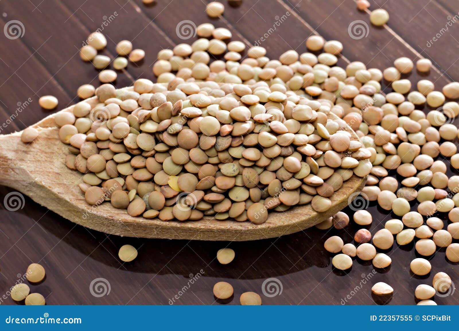 Culinaris透镜扁豆