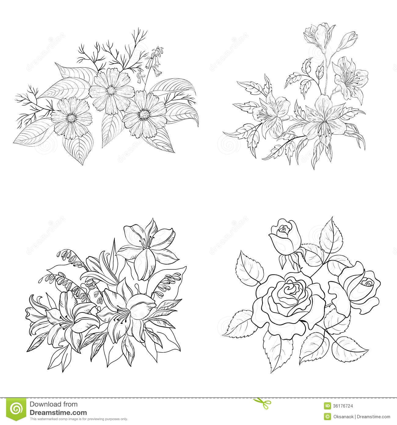 Cultivated Flowers Outline Set Stock Vector Illustration Of Lily