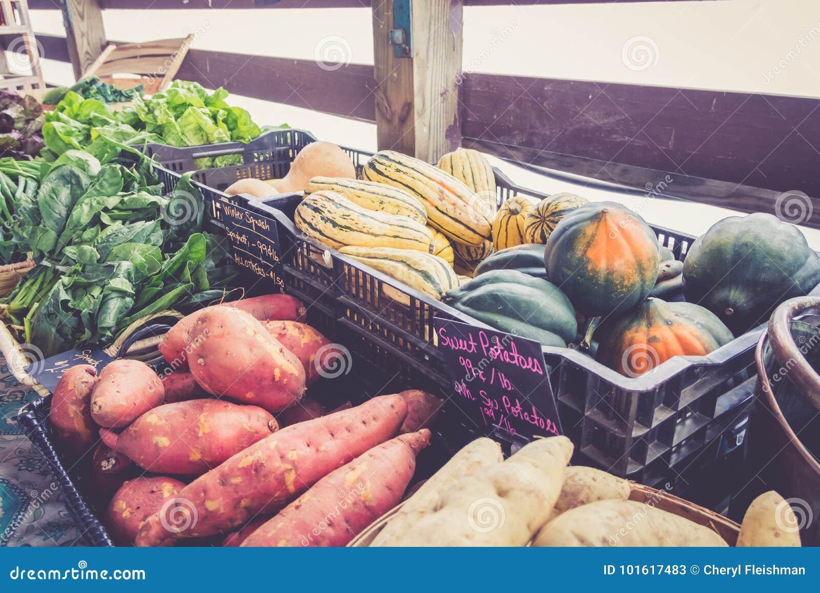 Cultive batatas e a polpa frescas na exposição no festival da colheita do mercado dos fazendeiros
