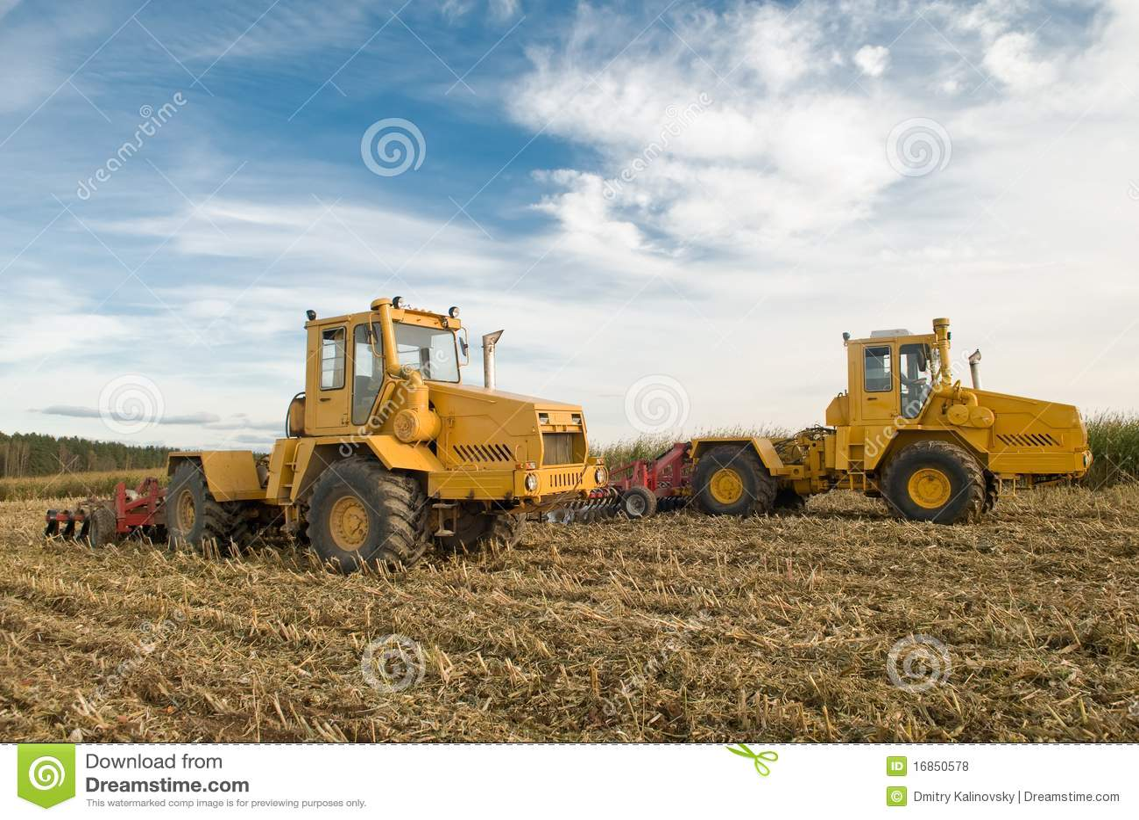 Cultivo agricultural do campo