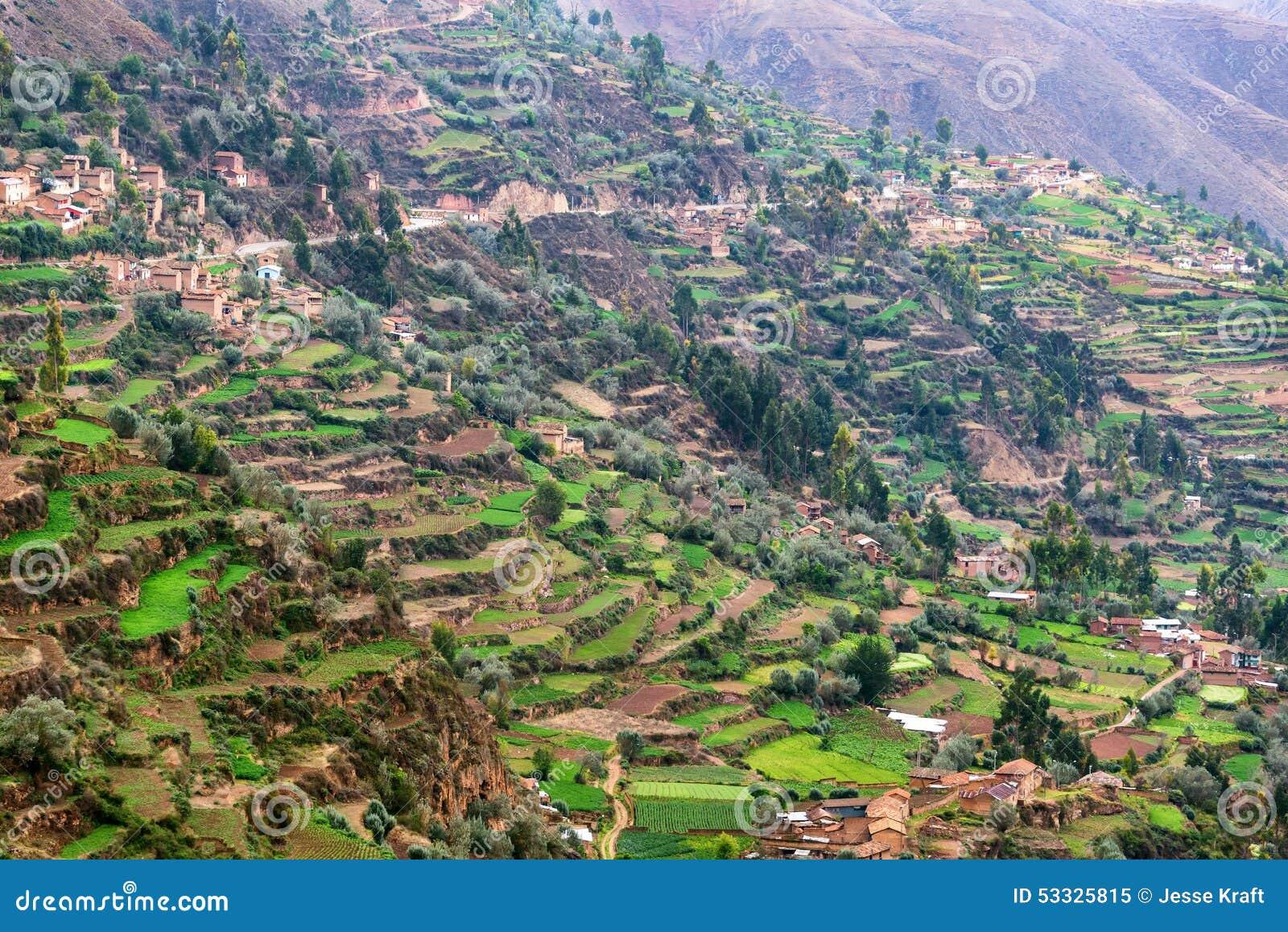Cultivo De Terrazas En Perú Imagen De Archivo Imagen De