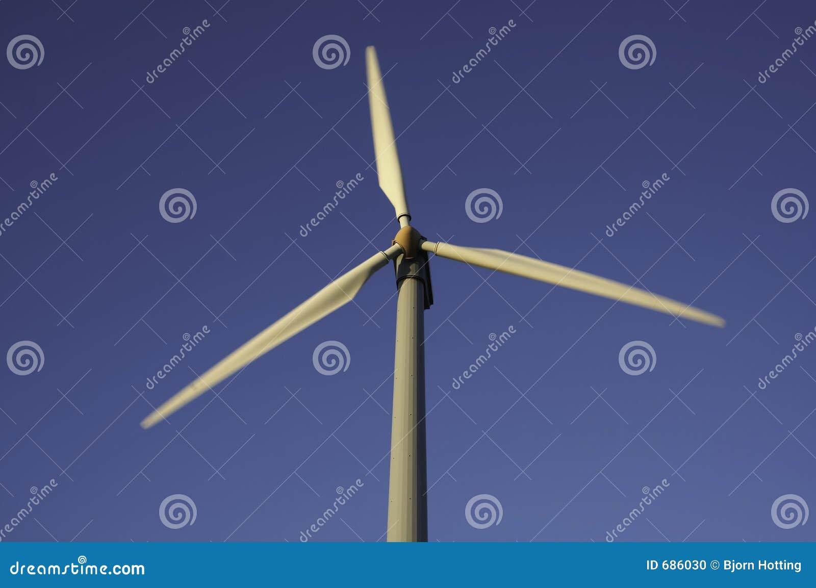 Cultivo do vento