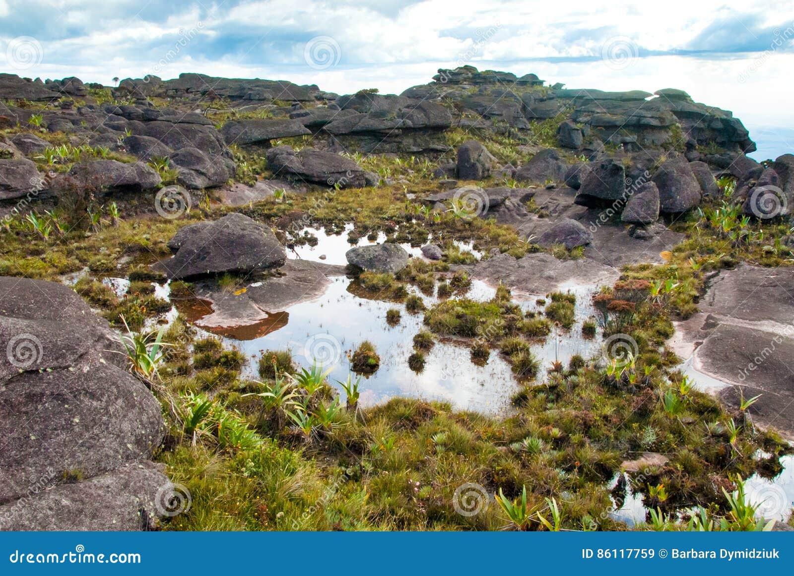Cumbre de Roraima Tepui, Gran Sabana, Venezuela