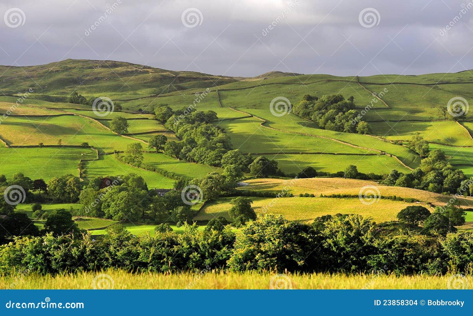 Cumbria odpowiada łąki
