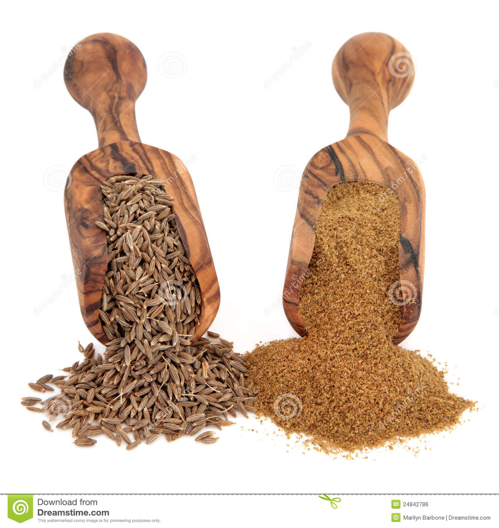 Cumin Seed and Powder