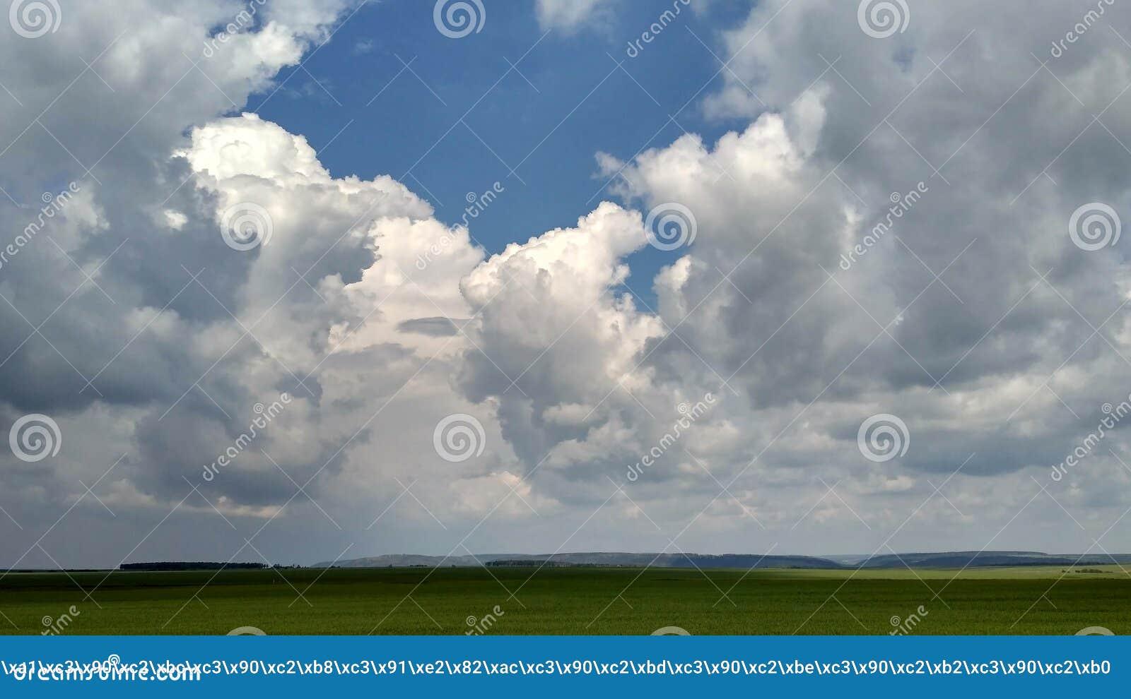 Cumulus mous et champs verts, paysage d été