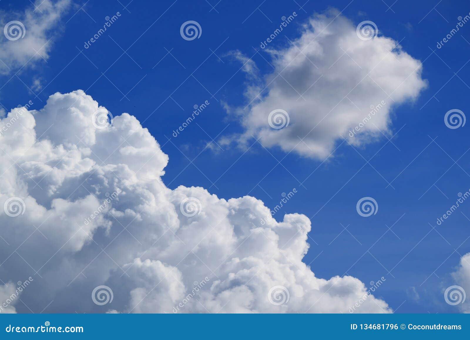 Cumulus pelucheux blancs flottant sur le ciel bleu vibrant