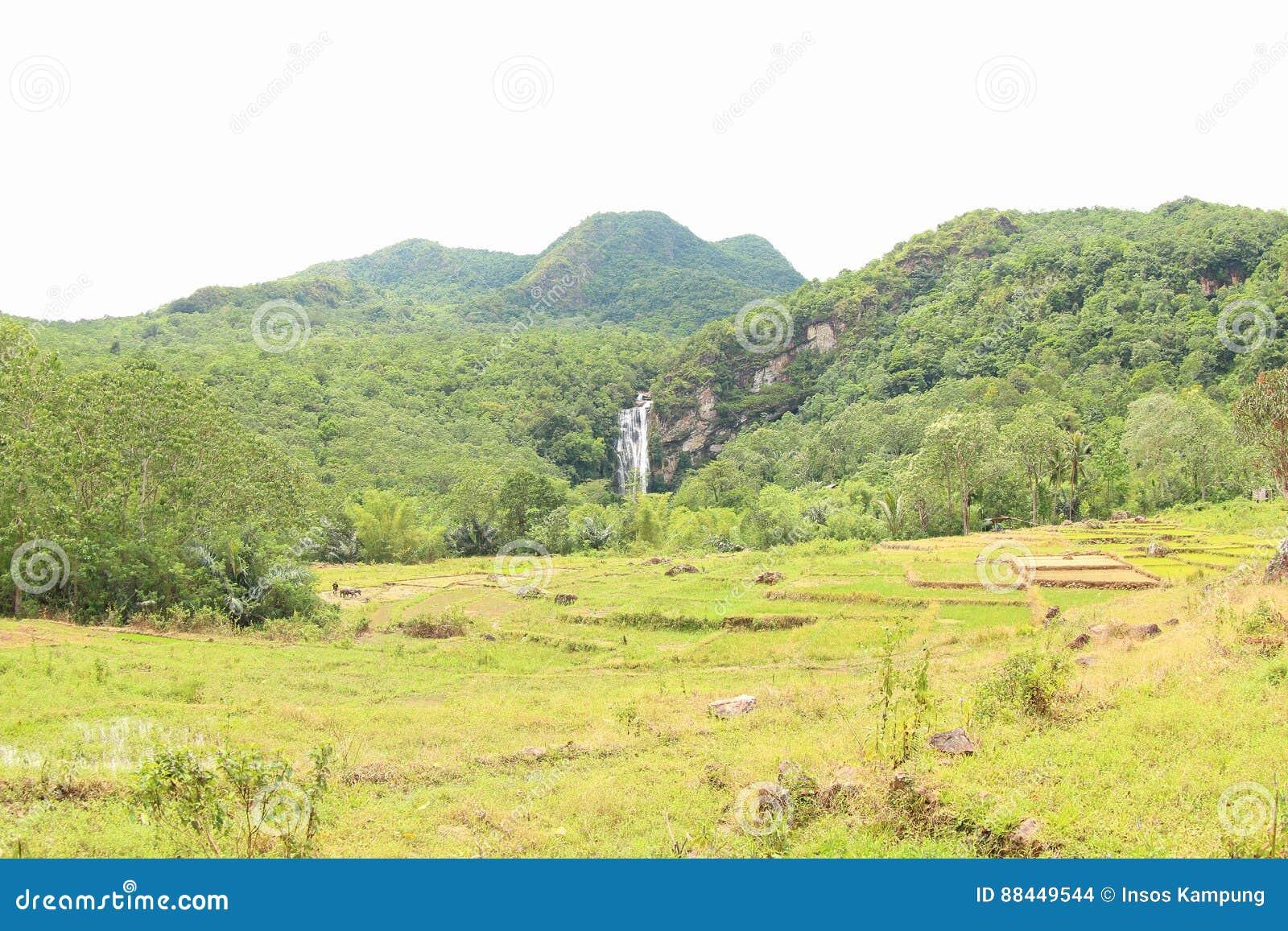 Cunca Rami Waterfall, East Nusa Tenggara