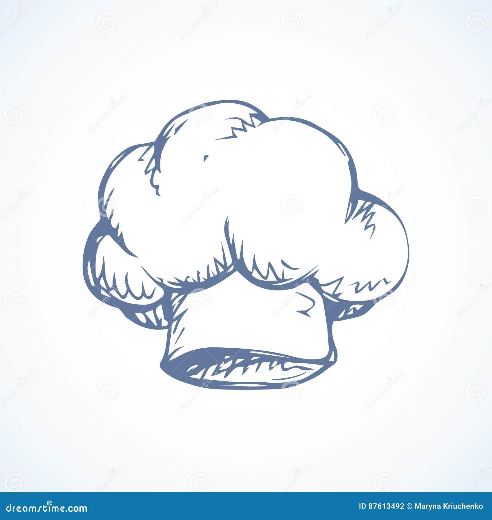 ... leggero Logo disegnato a mano dell immagine del profilo dell inchiostro  a mano libera del nero impreciso penna di stile dello scarabocchio di arte  nella ... 6973baef0a0d