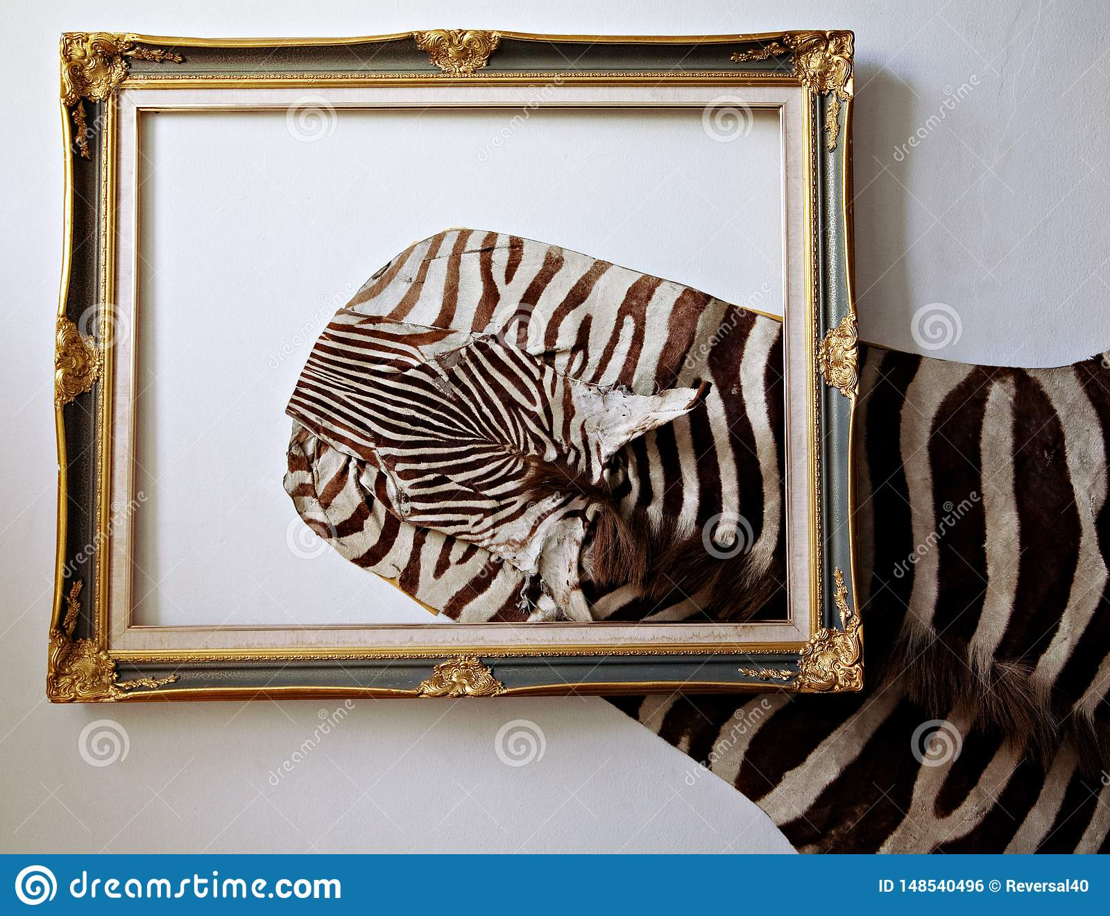 Cuoio della zebra