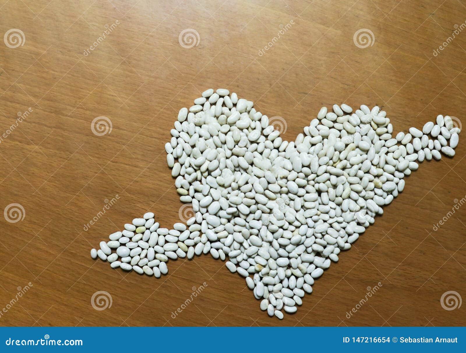 Cuore sistemato semi dei fagioli