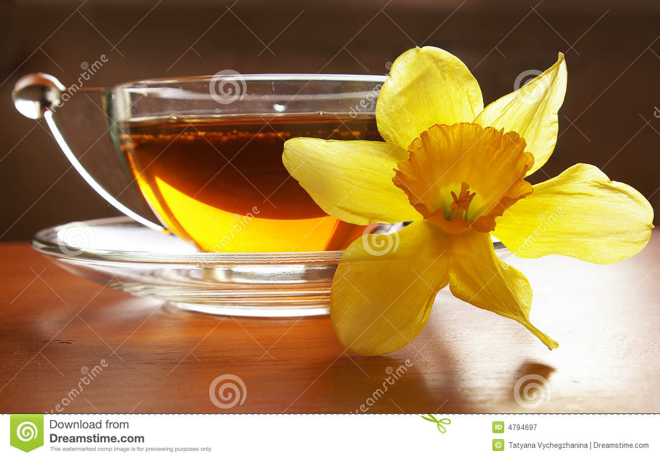 Cup of black tea and flower