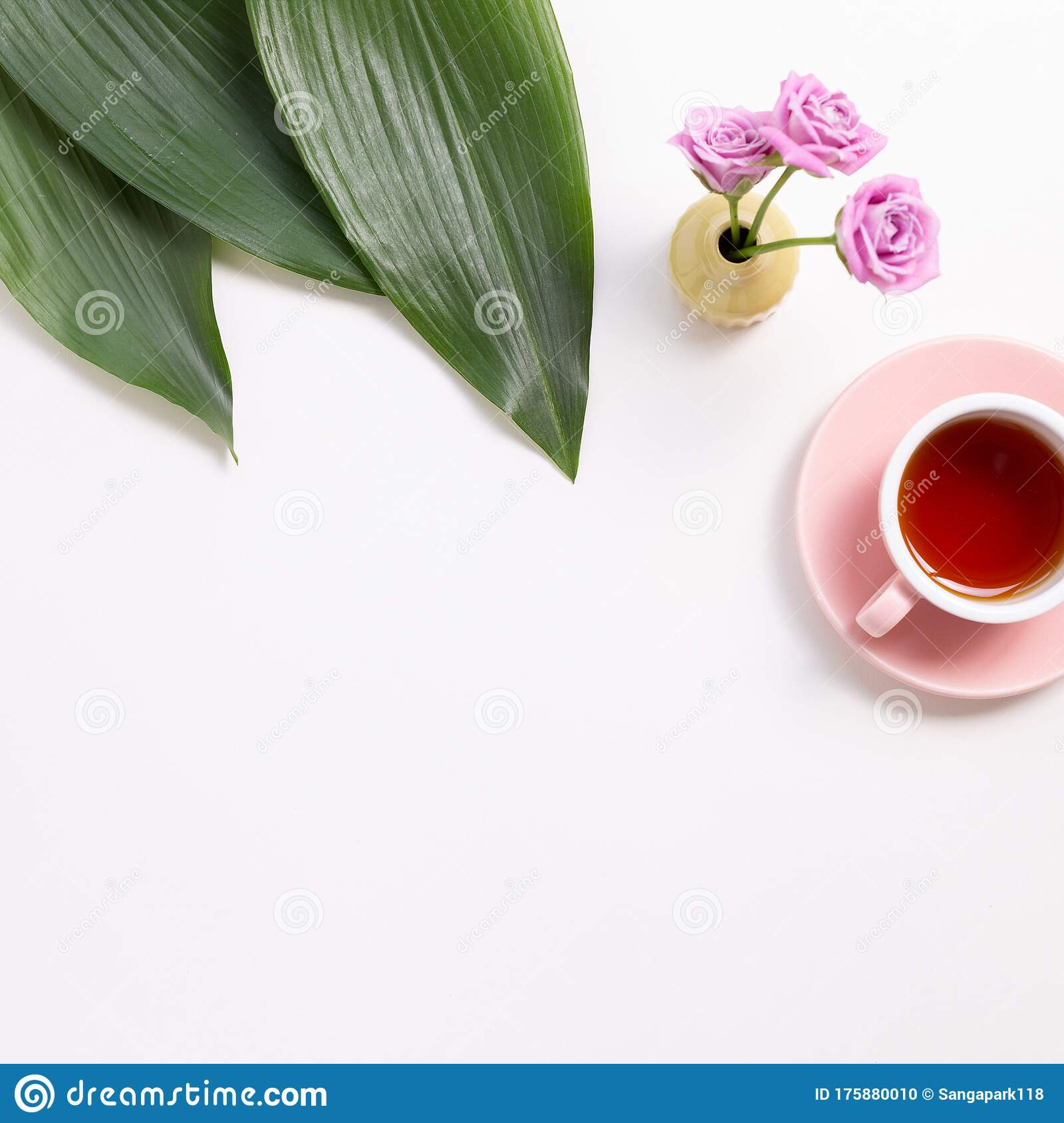 Cup Of Black Tea With Green Leaves And Flowers On White Background Stock Photo Image Of Aroma White 175880010