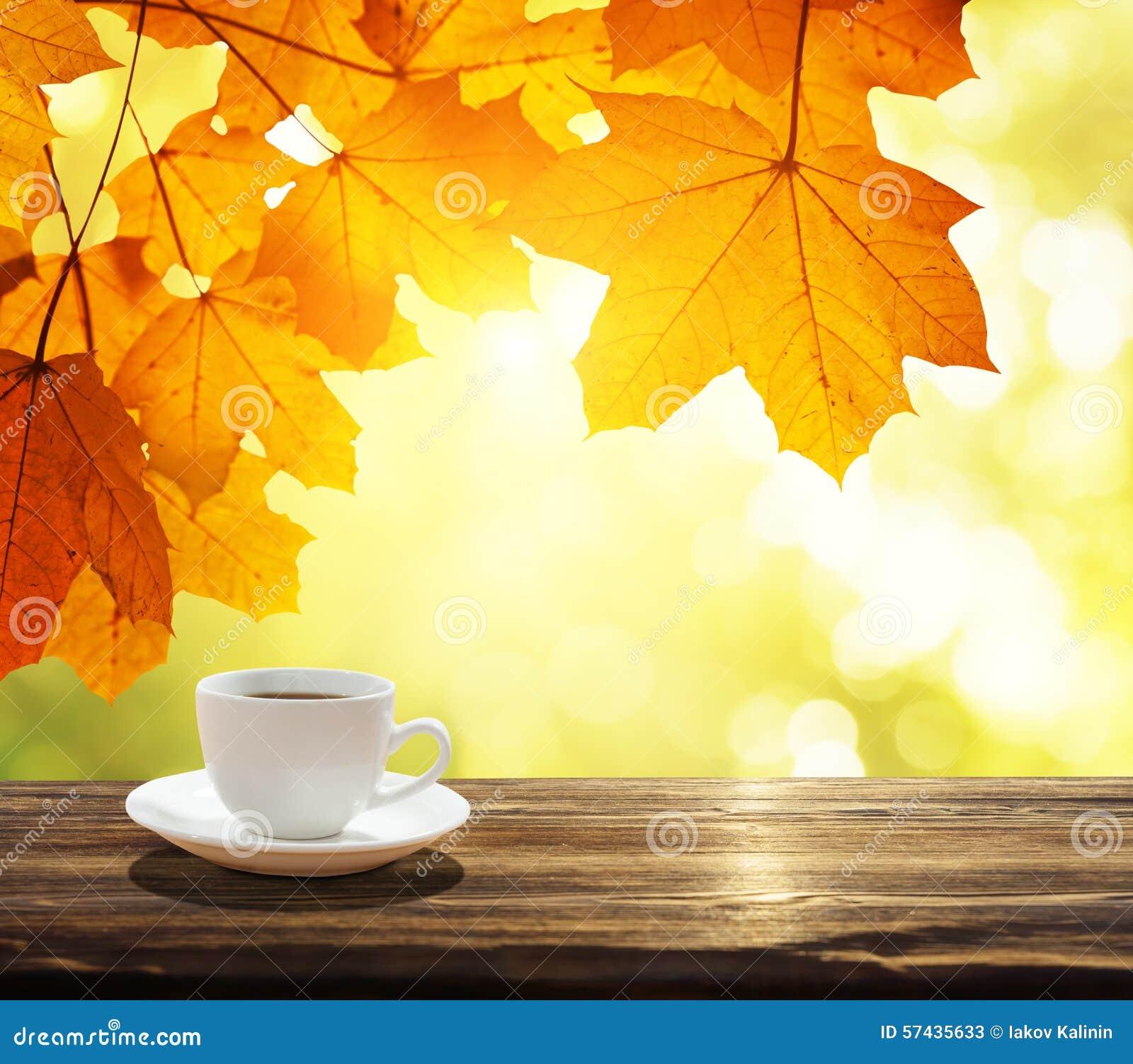 Фото осень кофе