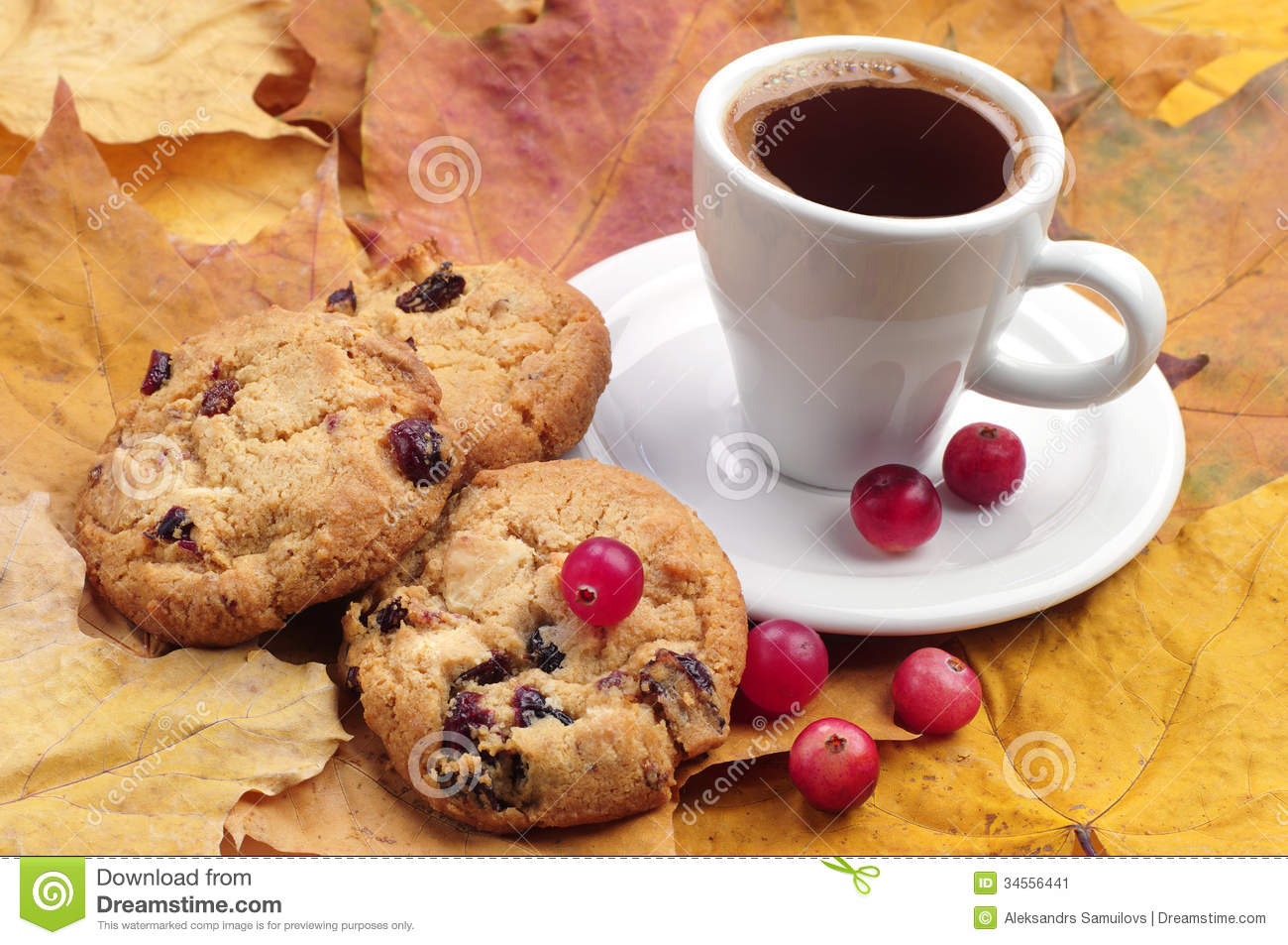 Cookie Coffee Cups Cup Of Coffee And Cookies Stock Image Image 34556441