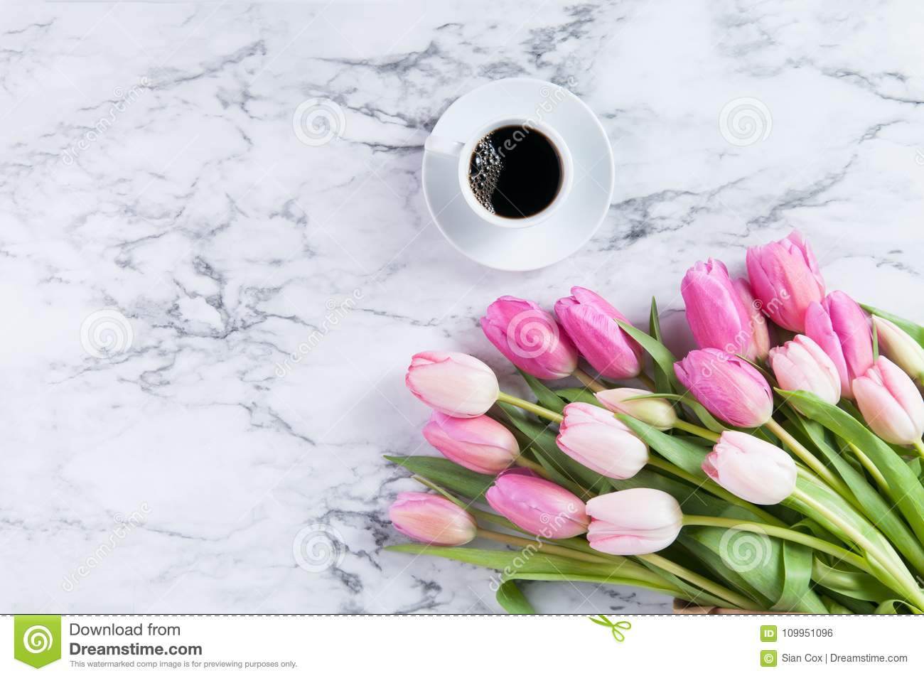 Spring Flowers Stock Photo Image Of Coffee Drink Counter 109951096