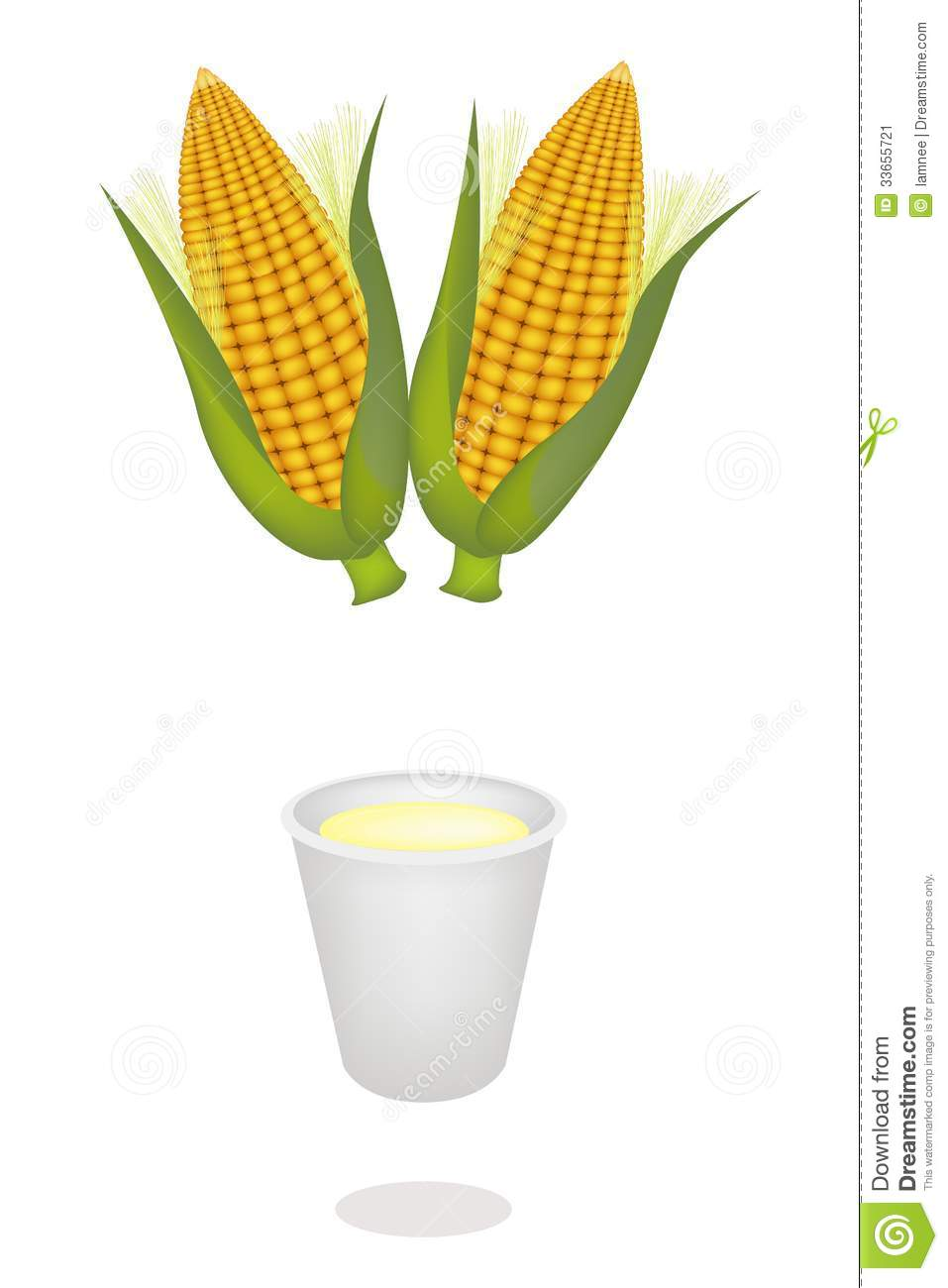 Fresh Ripe Sweet Corns with A Disposable Cup of Corn Juice or Corn ...
