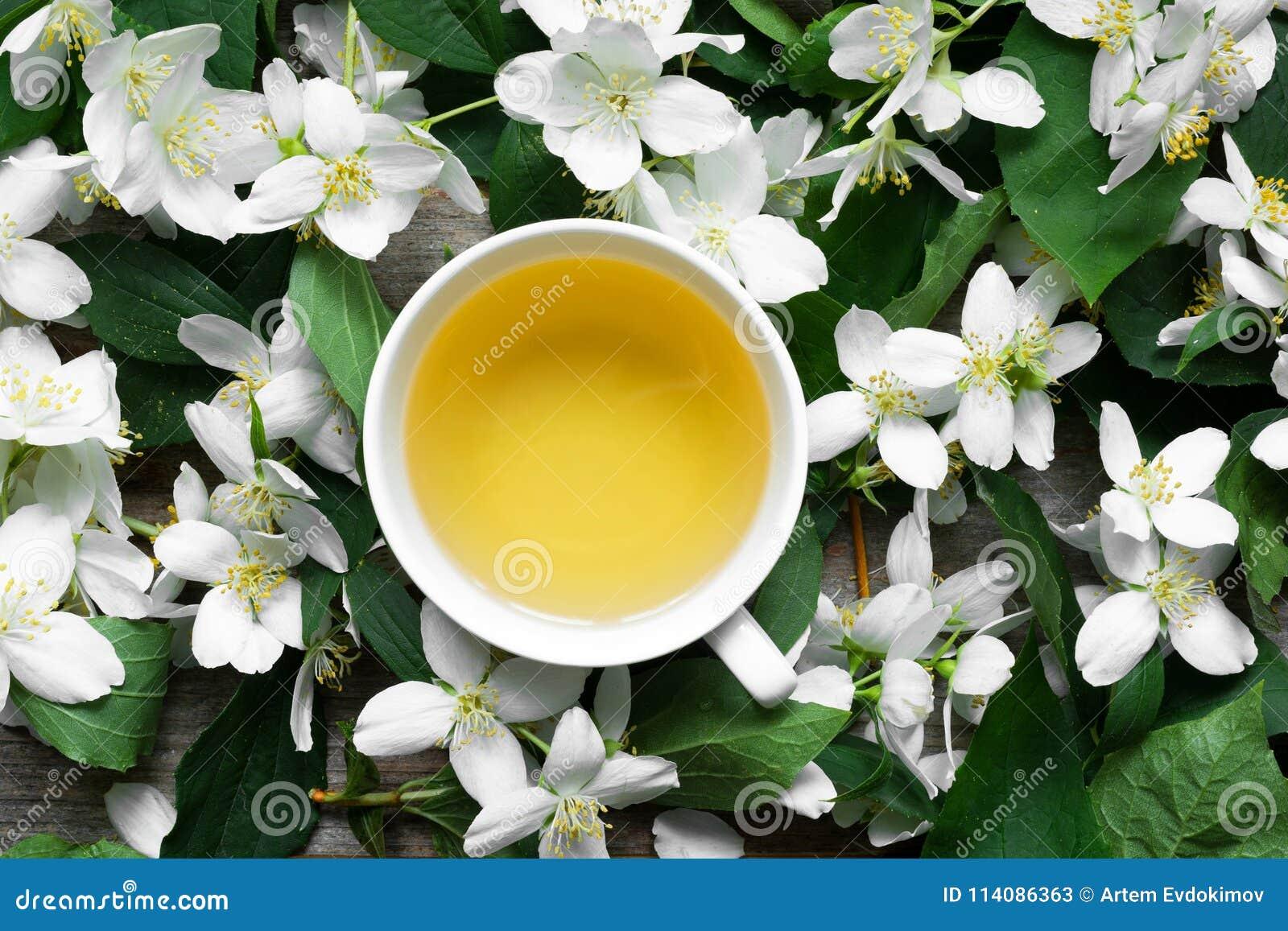 Cup Of Green Jasmine Tea On Jasmine Flowers Background Stock Image