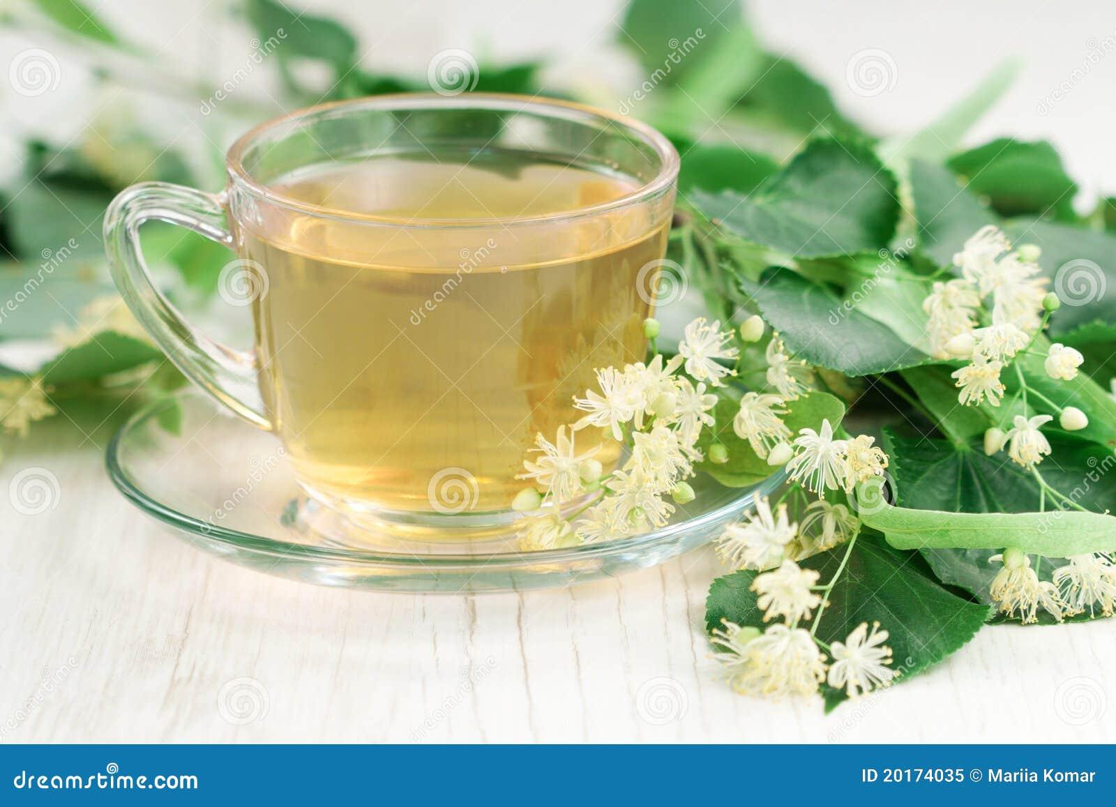 Cup of linden tea