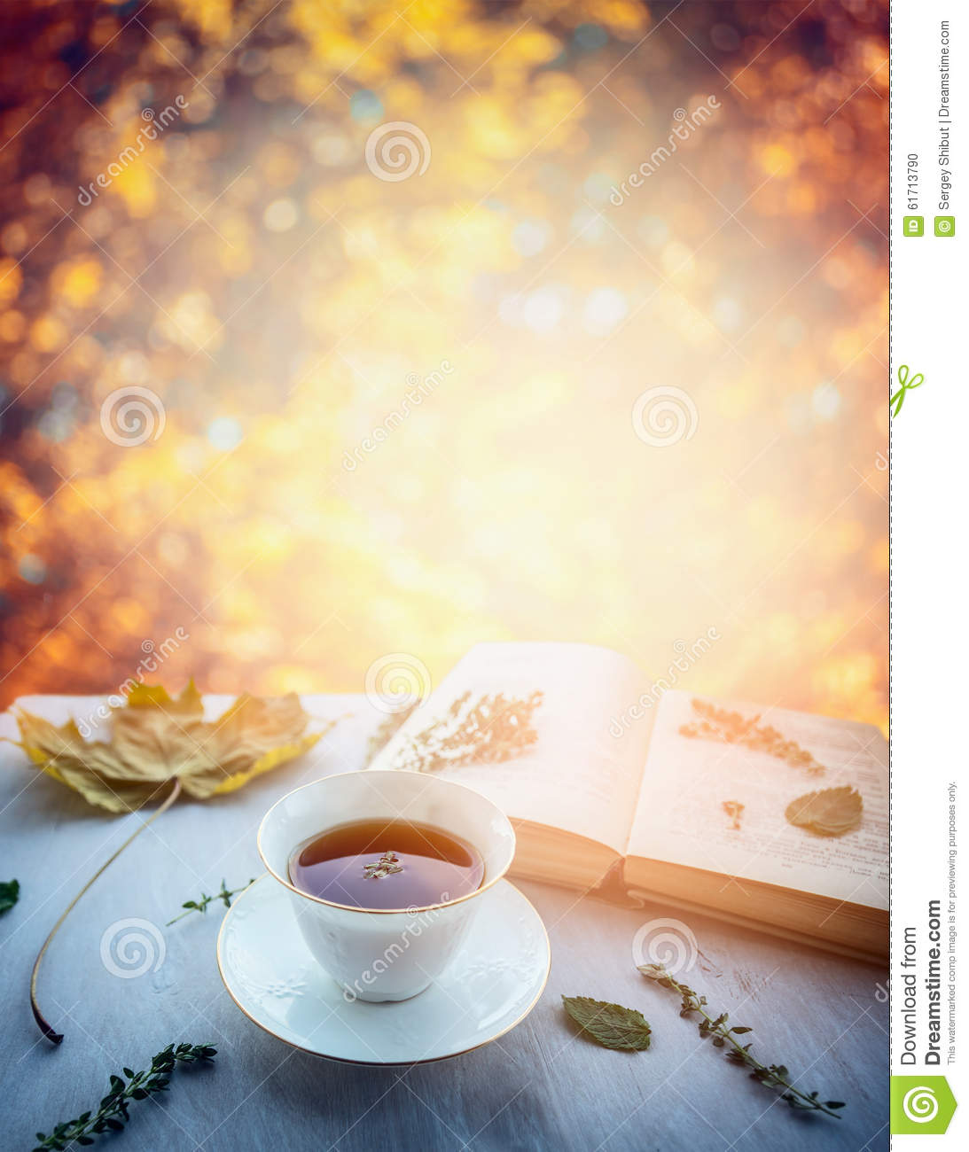 Cup Of Tea With Thyme Autumn Leaves And Open Book On