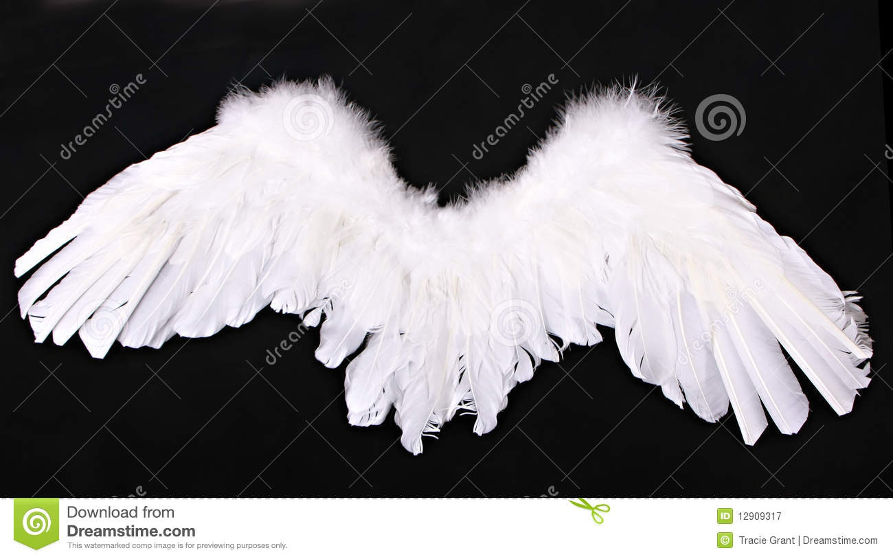 Cupid Angel Wings Photography Prop Royalty Free Stock ...