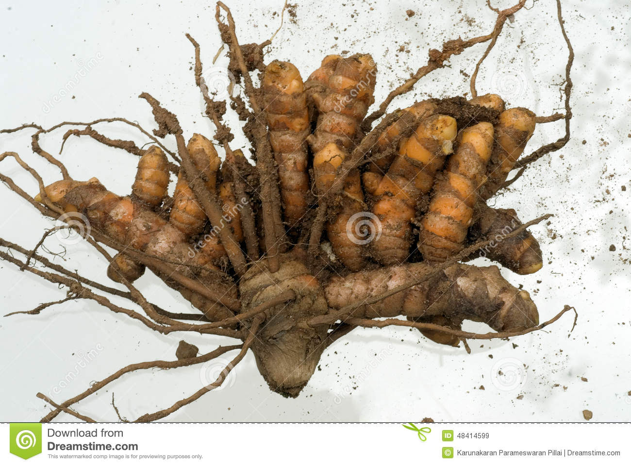 A ginger root up his wifes ass 5