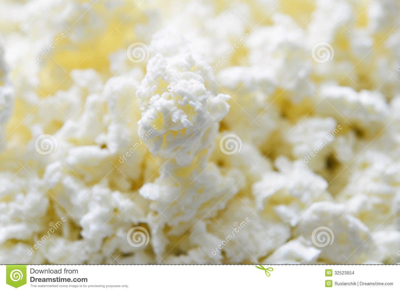 Curd Cheese Stock Photo Image Of Nonfat Cheese
