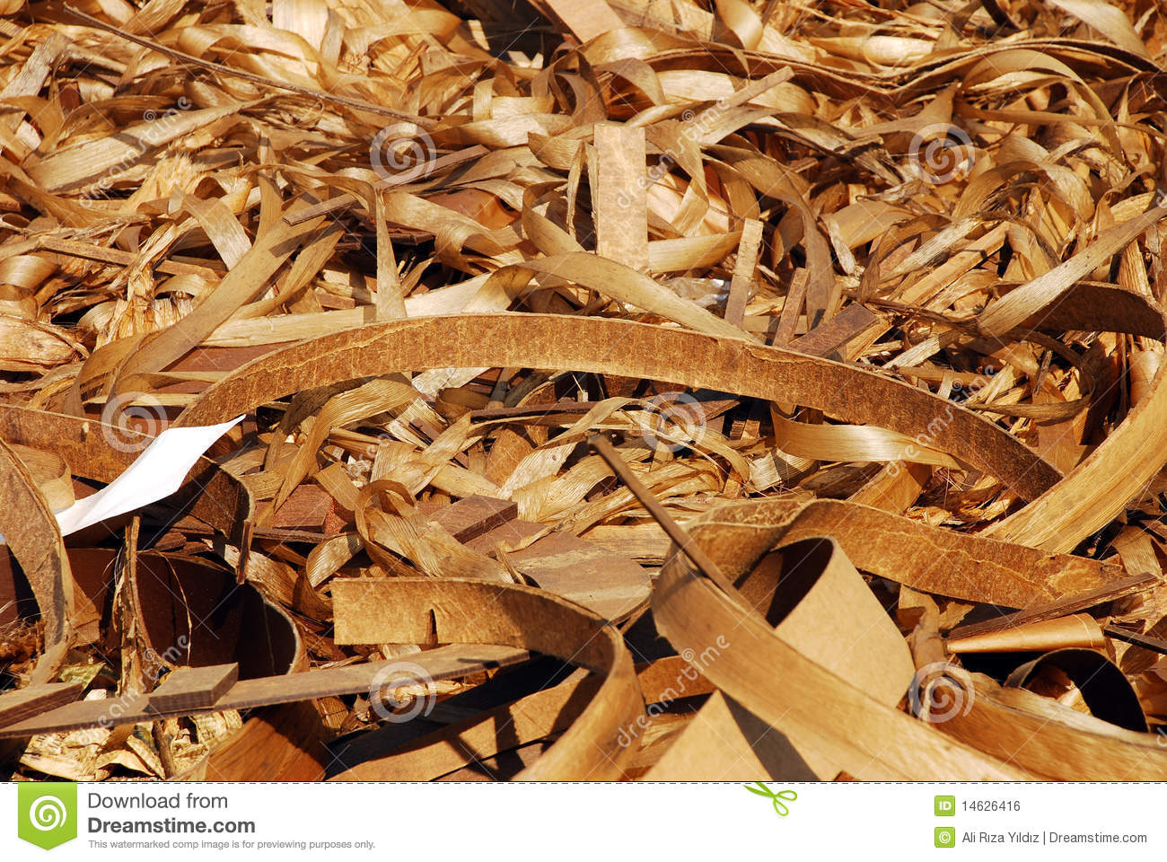 Curly Wood Shavings Royalty Free Stock Image - Image: 14626416